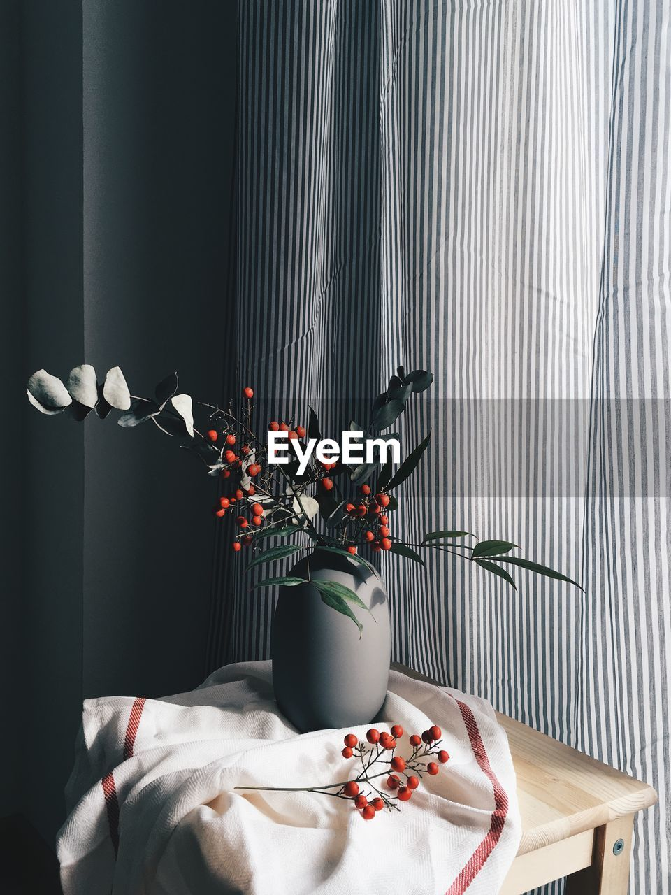 indoors, no people, plant, flower, table, vase, nature, flowering plant, curtain, freshness, home interior, still life, wall - building feature, decoration, food and drink, white color, day, toy, textile, food