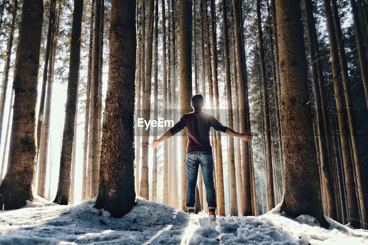 Rear View Of Man With Arms Outstretched While Standing In Forest During Winter