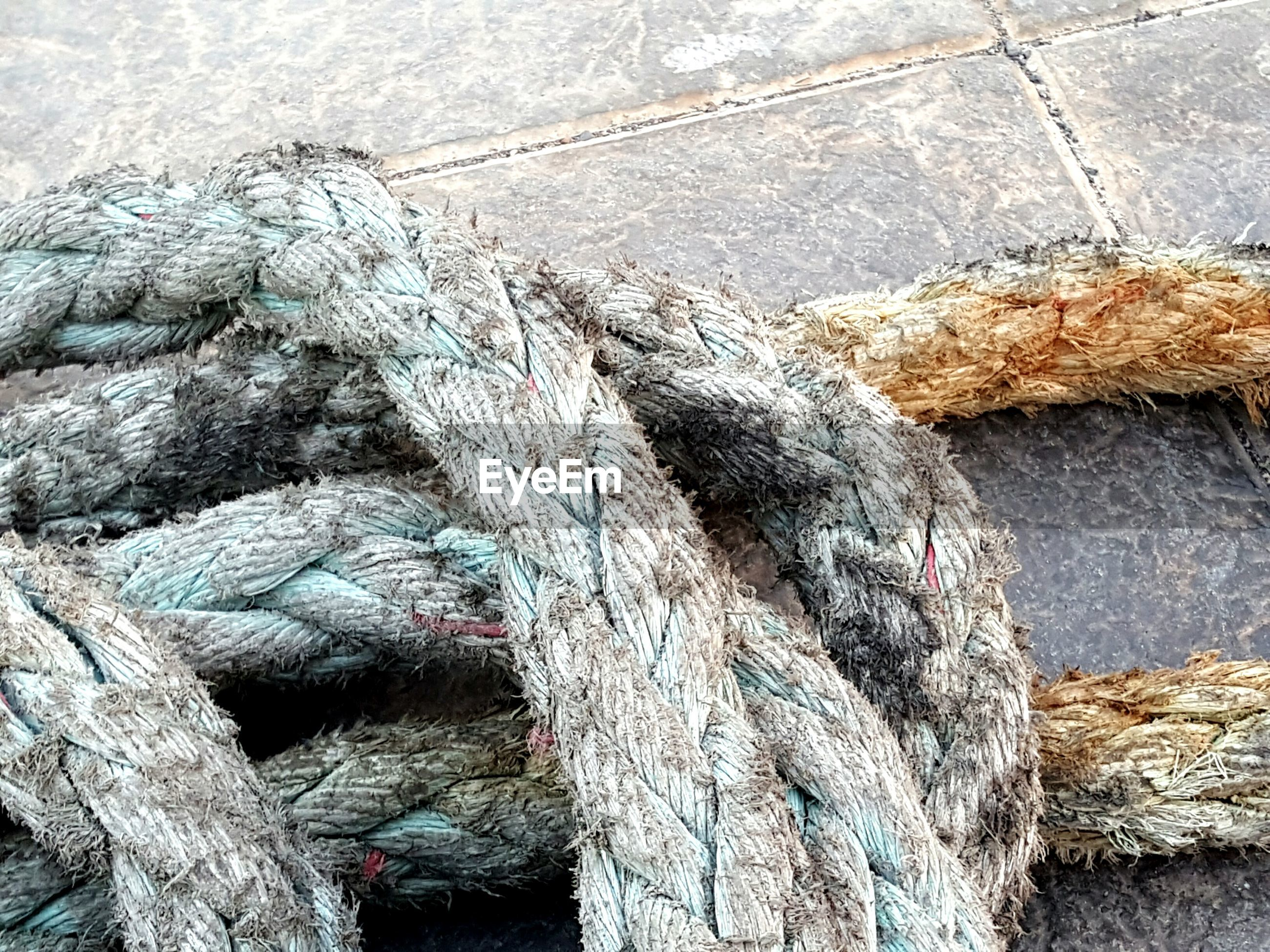 High angle view of old rope at harbor