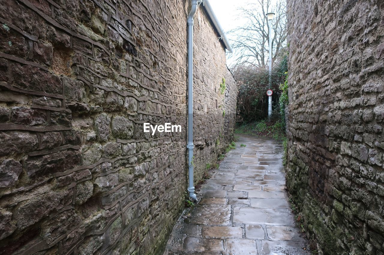 architecture, stone wall, built structure, brick wall, wall - building feature, building exterior, day, history, castle, outdoors, the way forward, no people, tree