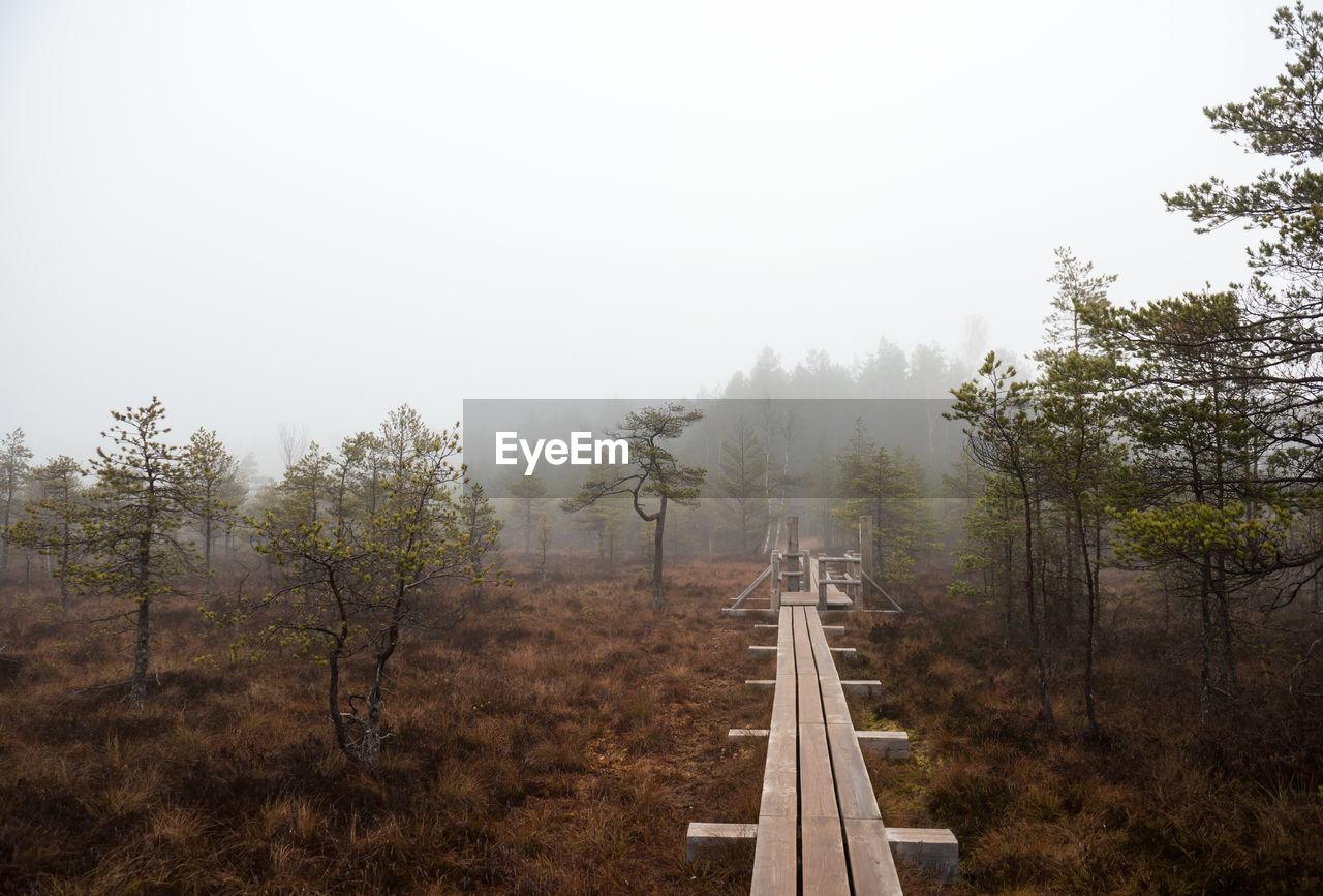 Elevated Walkway Over Field Against Sky At Kemeri National Park