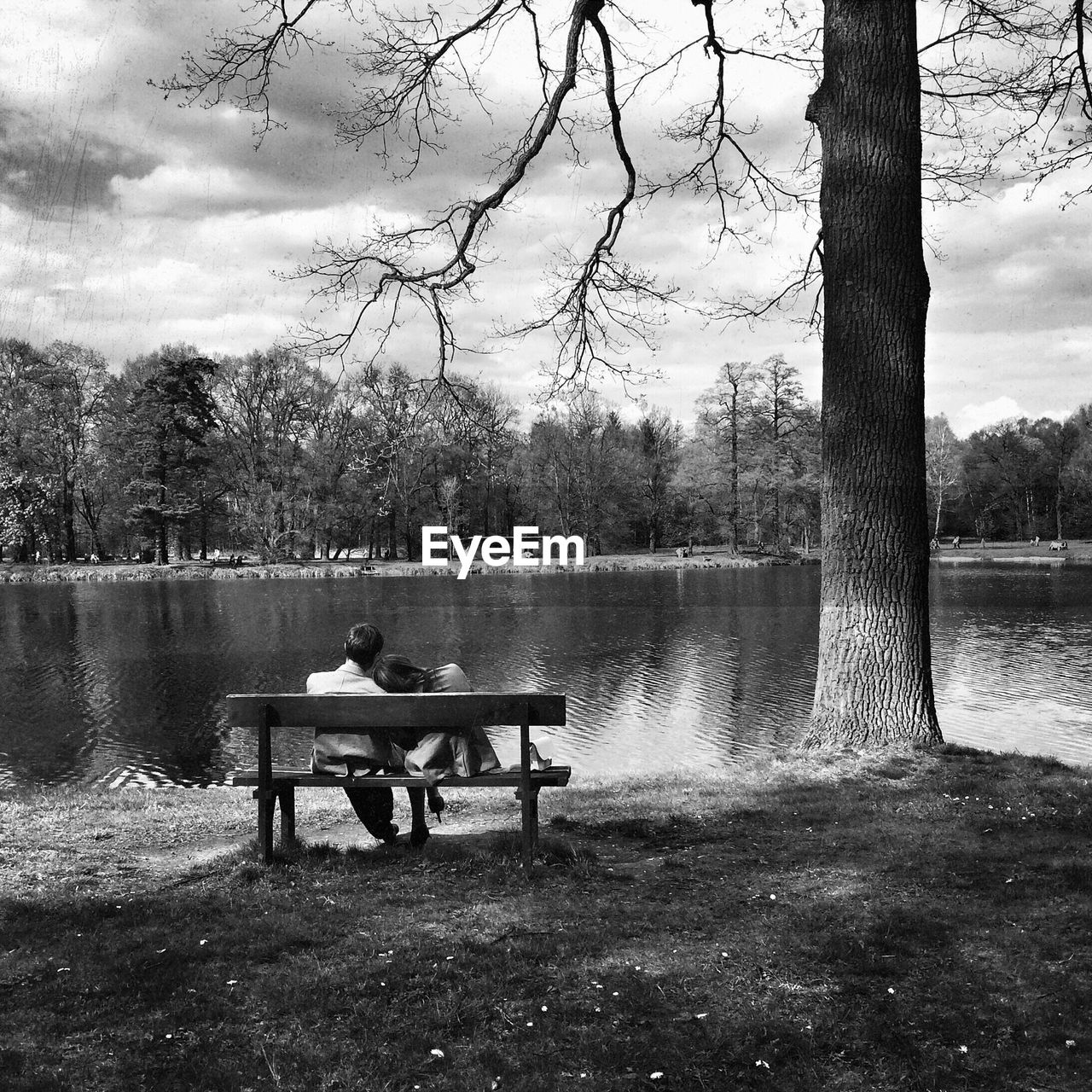 Rear view of couple sitting on bench by the lake