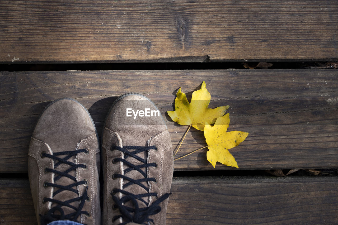 wood - material, yellow, table, plant part, leaf, no people, nature, close-up, high angle view, autumn, vulnerability, dry, fragility, indoors, still life, beauty in nature, day, directly above, flower, change, leaves, maple leaf