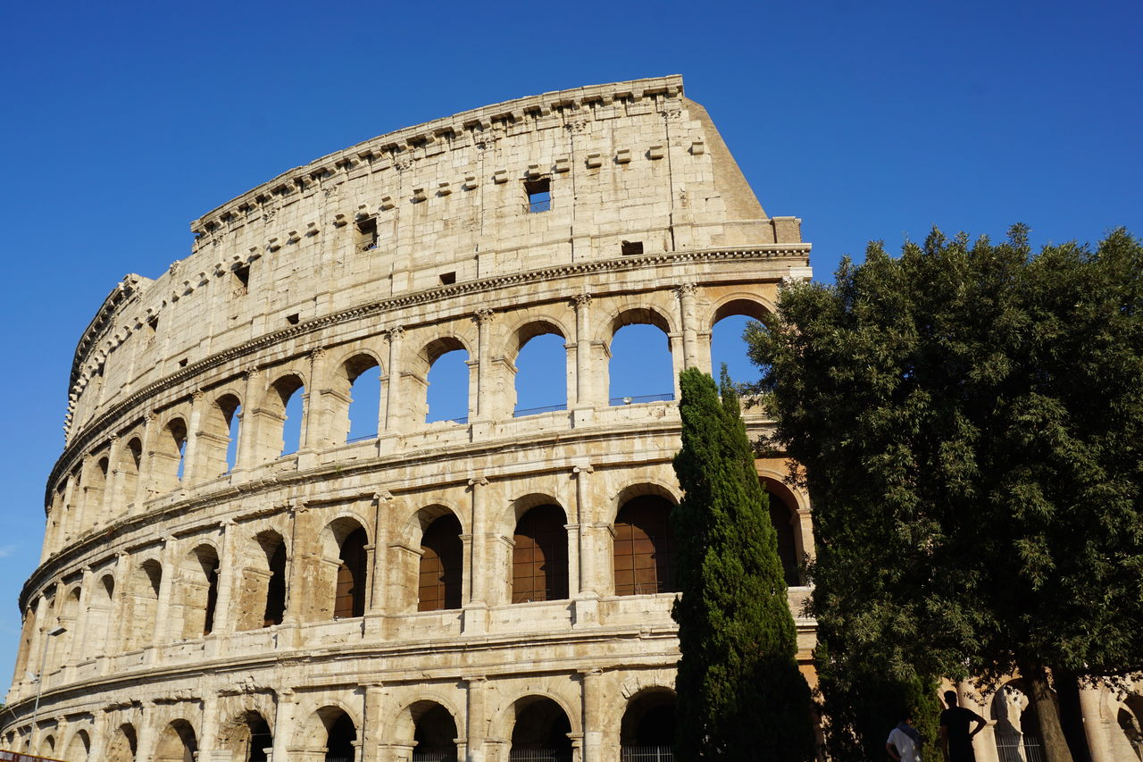 history, the past, sky, ancient, amphitheater, old ruin, arch, tree, tourism, travel destinations, clear sky, nature, arts culture and entertainment, travel, plant, architecture, built structure, day, building exterior, ancient civilization, outdoors, archaeology, arched, ancient history