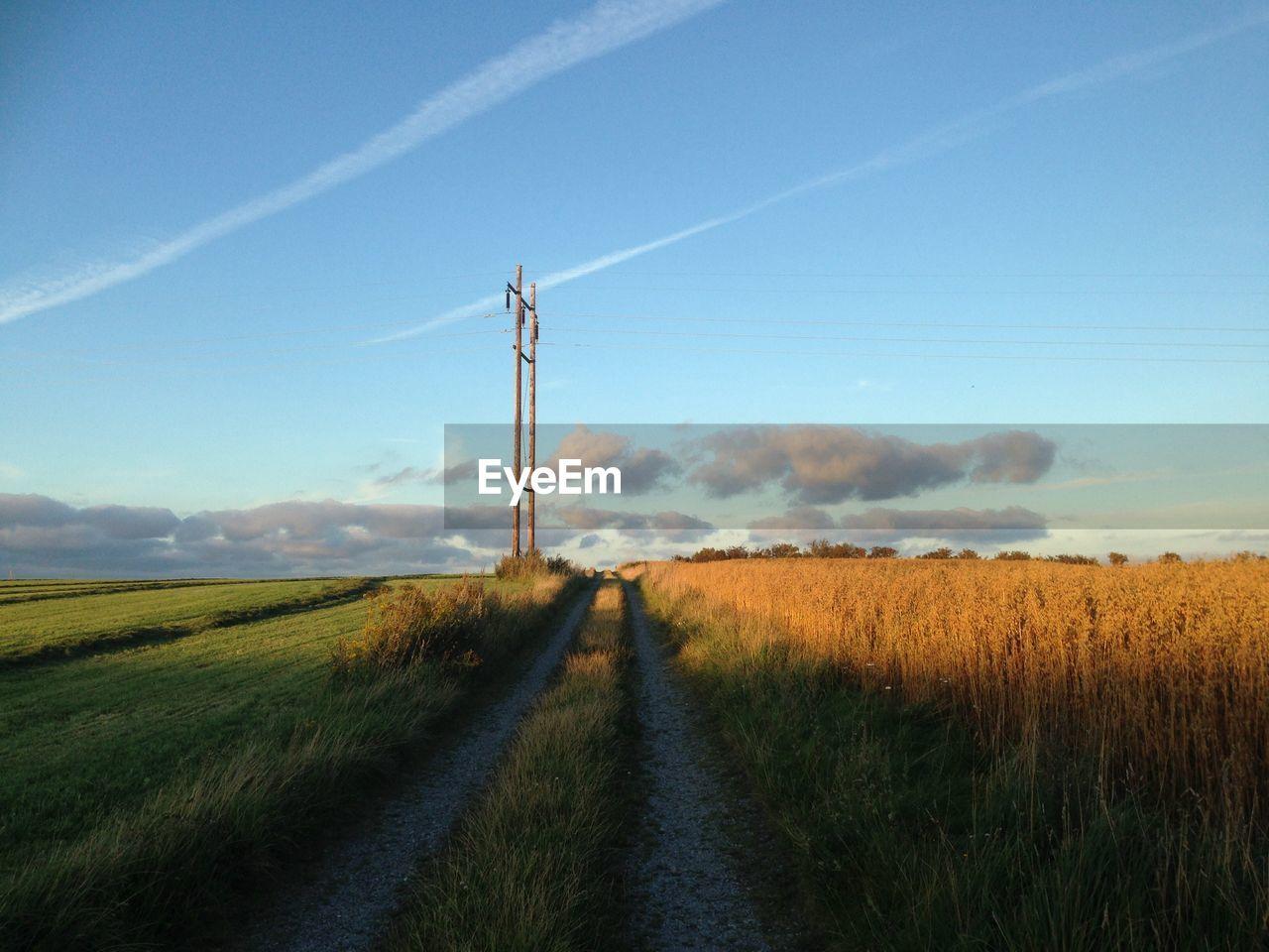 Footpath Amidst Grassy Field Against Sky