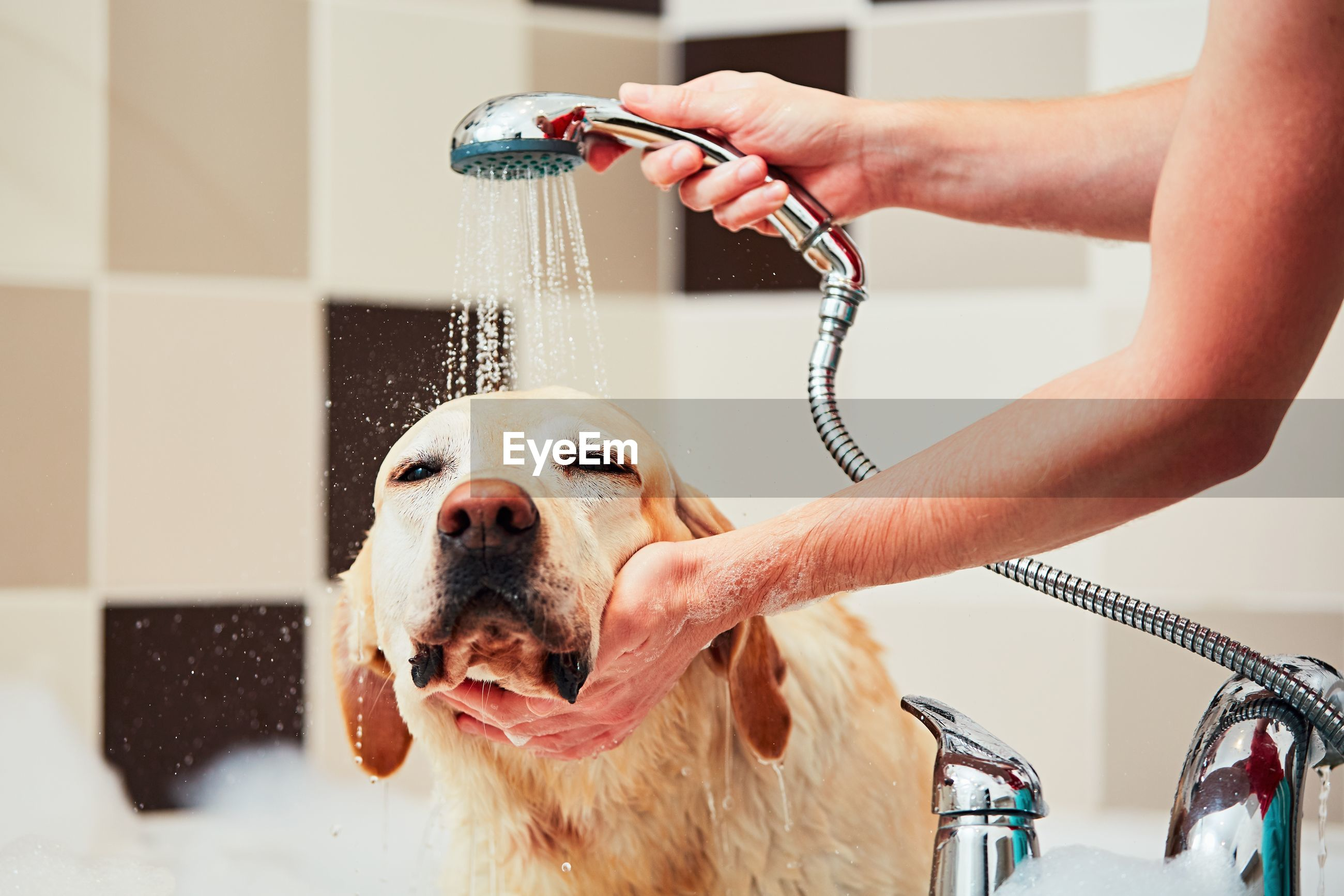 Man with dog in bathroom