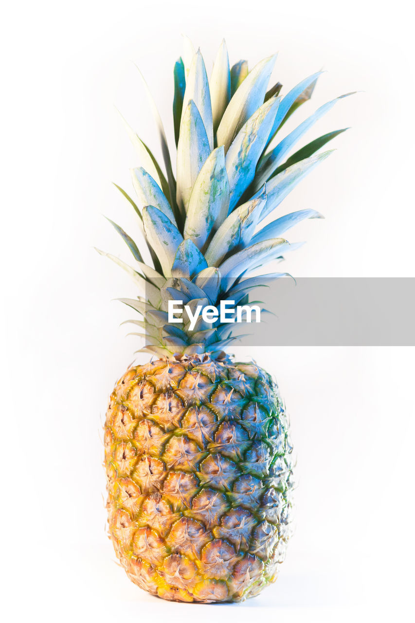 pineapple, tropical fruit, studio shot, fruit, healthy eating, food and drink, food, wellbeing, white background, indoors, freshness, close-up, no people, still life, cut out, single object, blue, ripe, juicy, sphere
