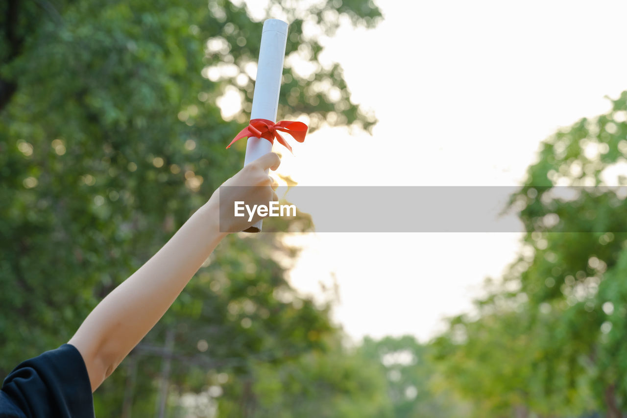 Cropped hand of woman holding diploma against trees