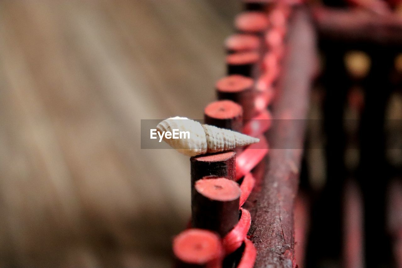 close-up, focus on foreground, selective focus, no people, wood - material, day, red, nature, outdoors, beauty in nature, plant, hanging, growth, pattern, food and drink, sunlight, metal, food, invertebrate, group of objects