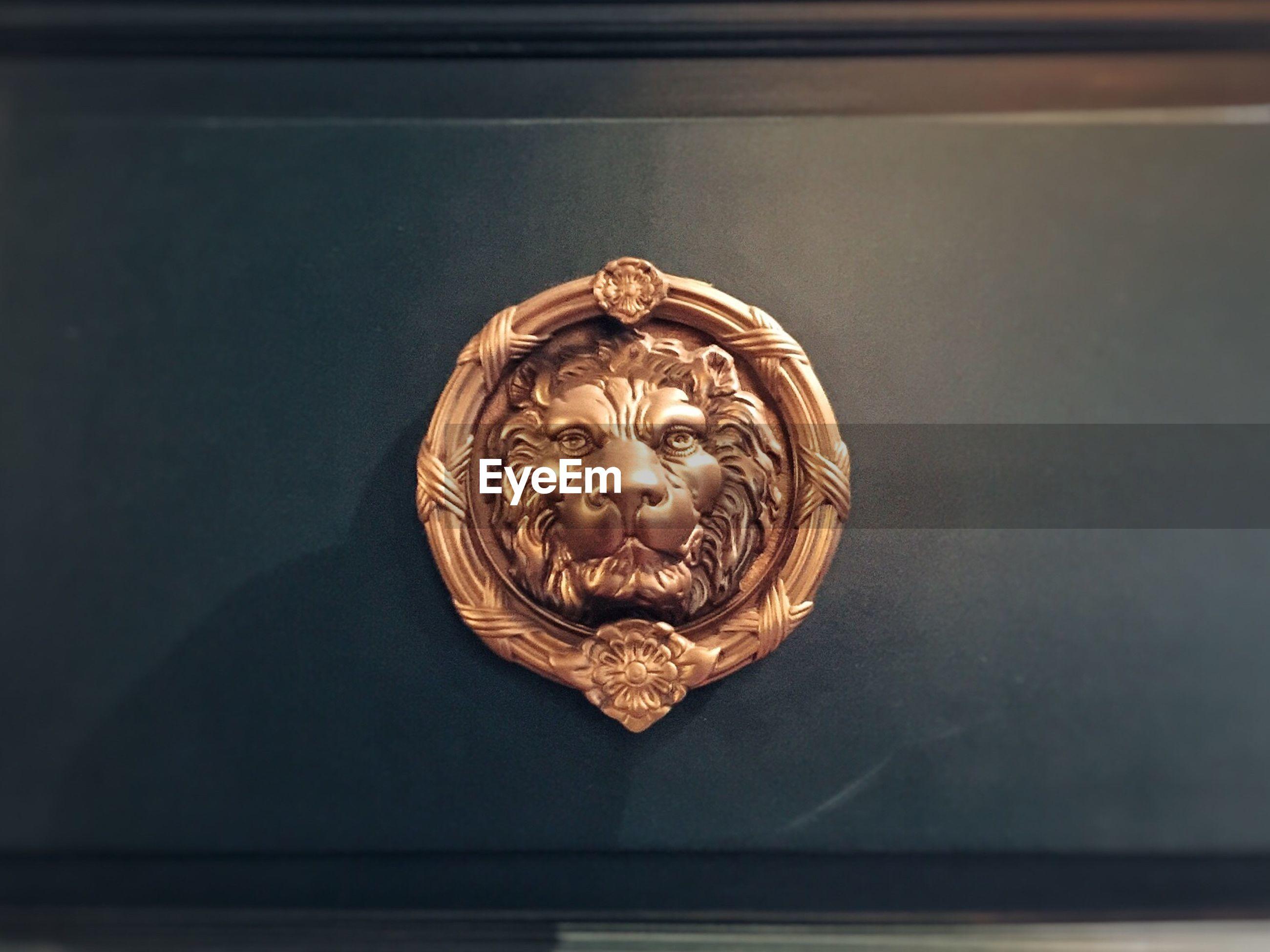 CLOSE-UP VIEW OF HUMAN EYE