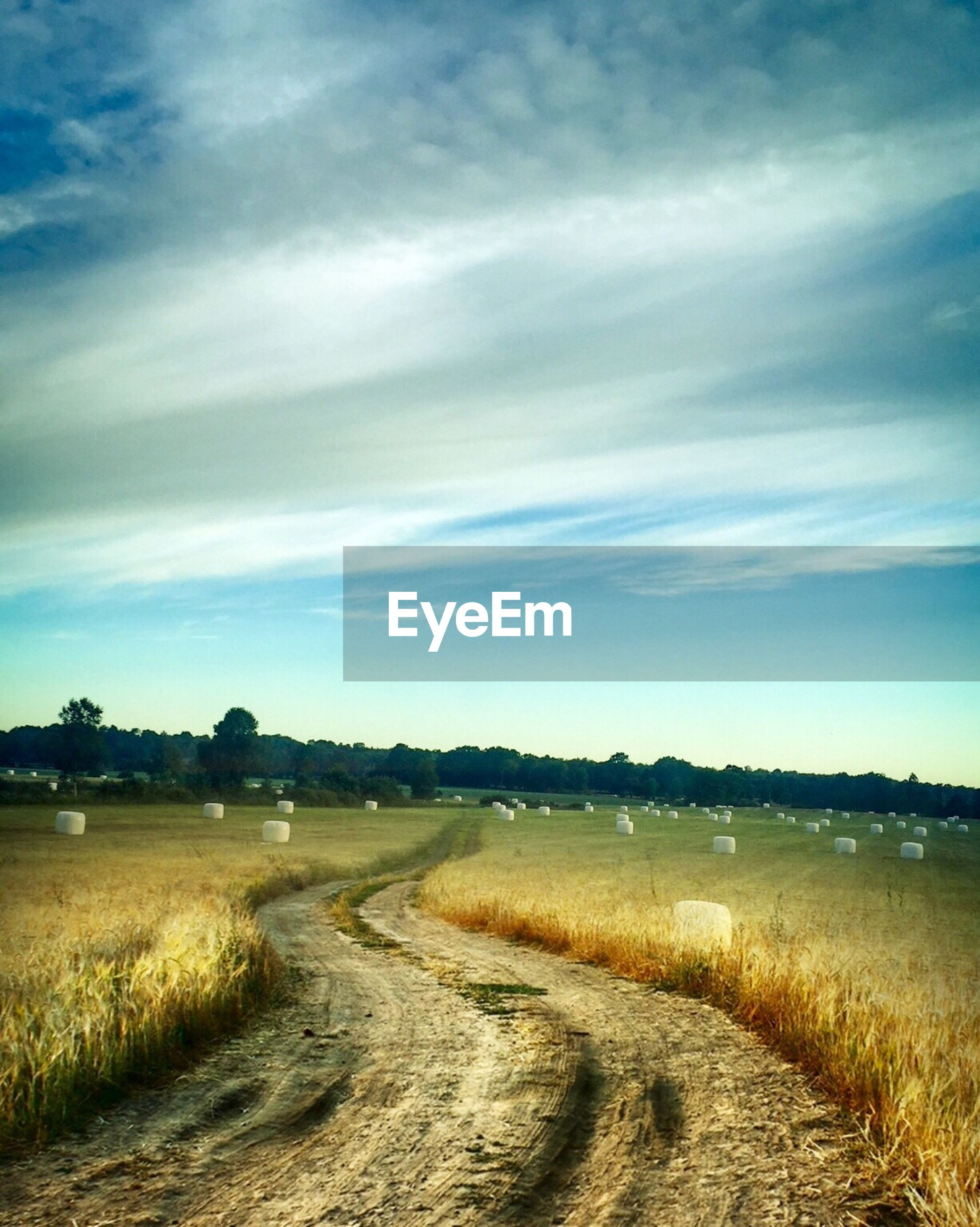 sky, tranquil scene, tranquility, the way forward, water, cloud - sky, landscape, scenics, field, nature, beauty in nature, grass, cloud, dirt road, road, outdoors, cloudy, no people, diminishing perspective, rural scene