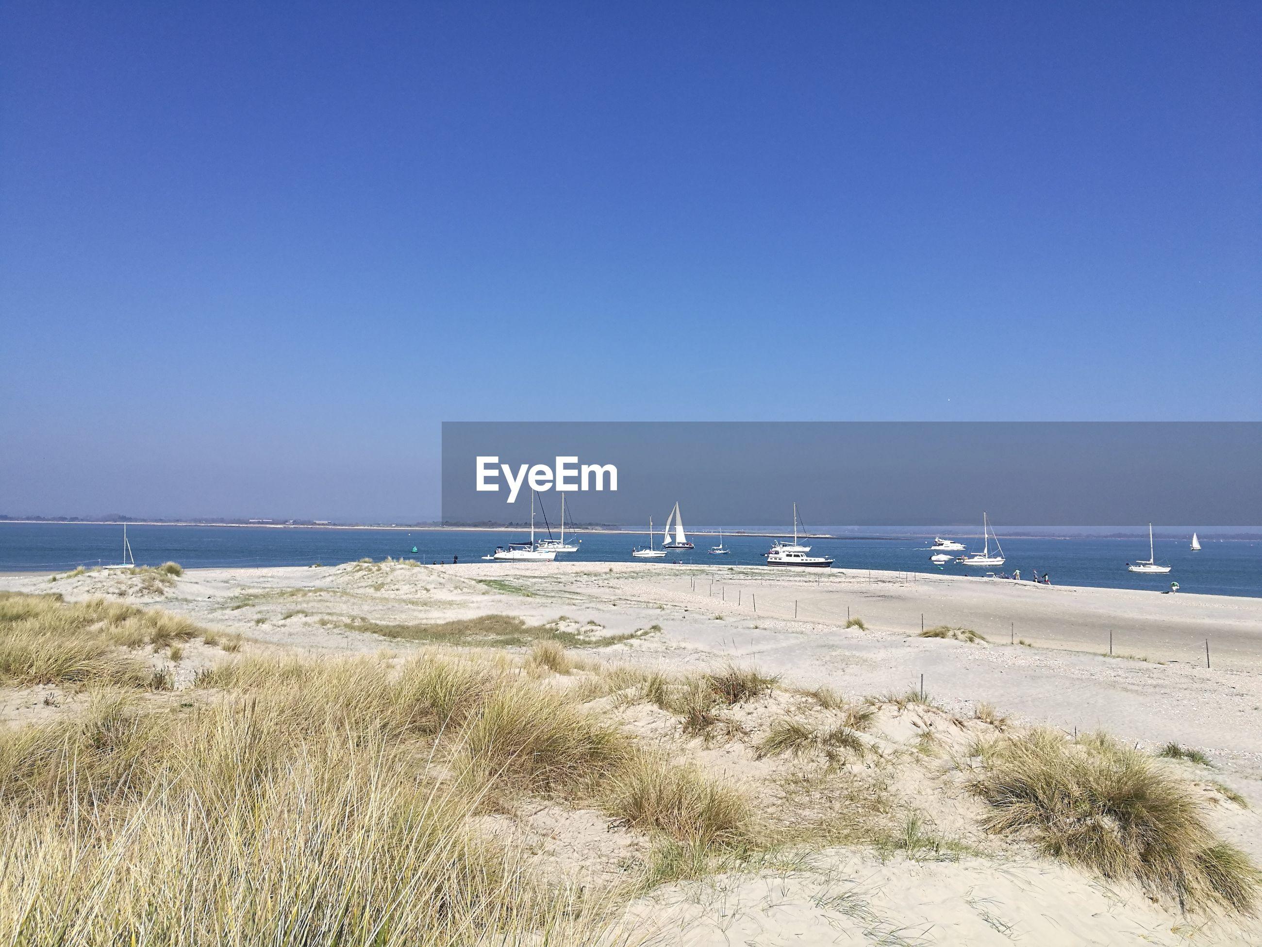 BEACH AGAINST CLEAR BLUE SKY