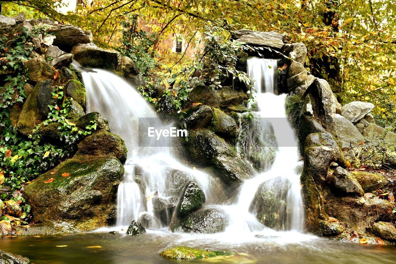 flowing water, water, scenics - nature, waterfall, forest, beauty in nature, rock, tree, long exposure, rock - object, motion, nature, solid, plant, no people, land, blurred motion, flowing, day, outdoors, power in nature, falling water, rainforest
