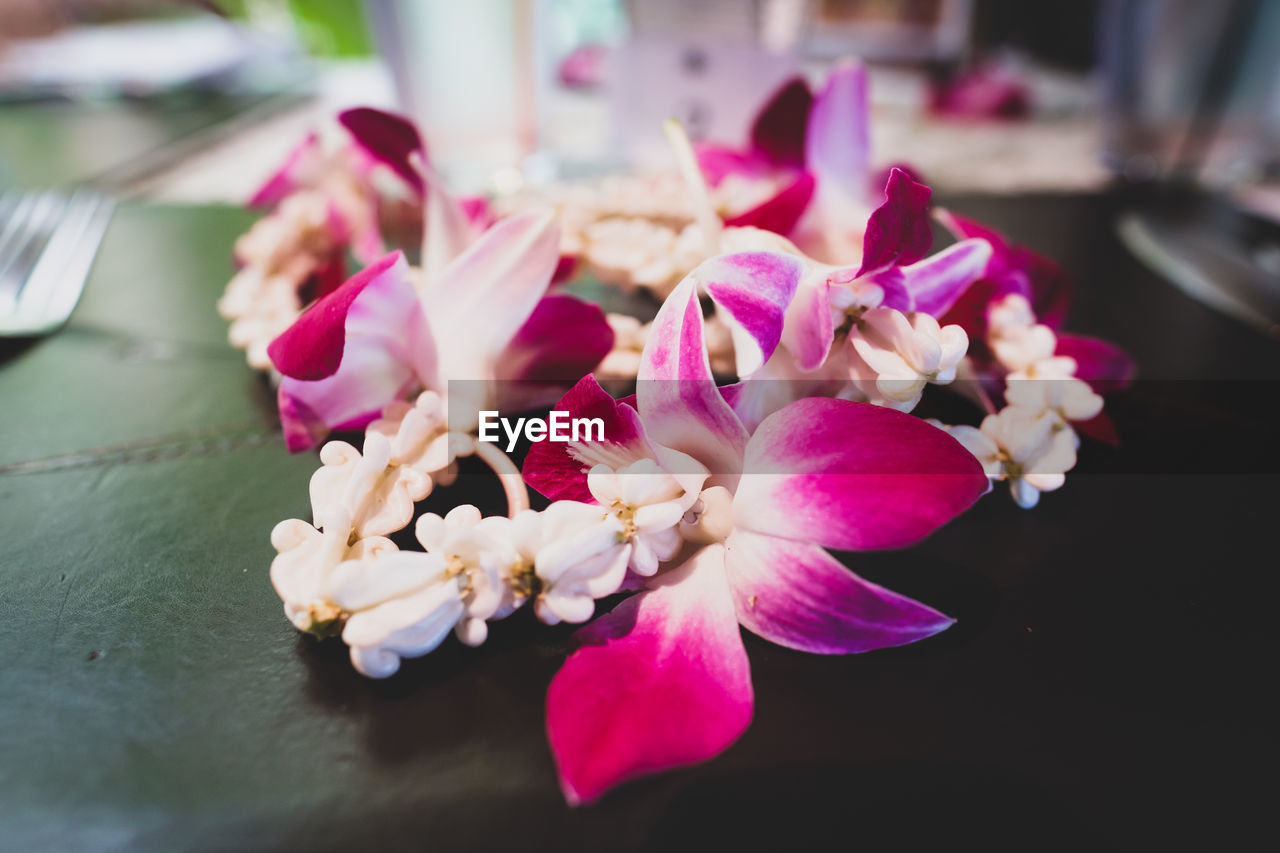 Close-up of pink orchids on table