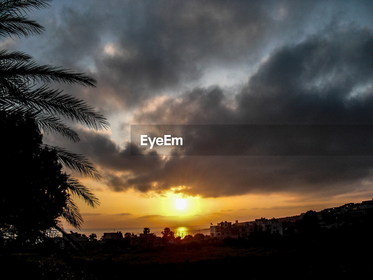 sunset, beauty in nature, sky, nature, cloud - sky, silhouette, scenics, dramatic sky, tree, no people, tranquil scene, outdoors