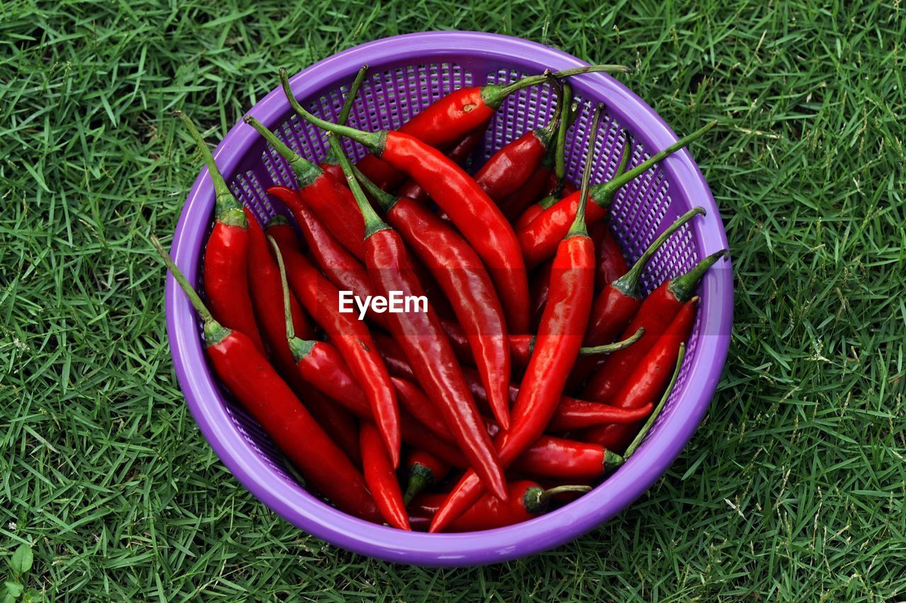 Close-Up Of Red Chilies In Basket