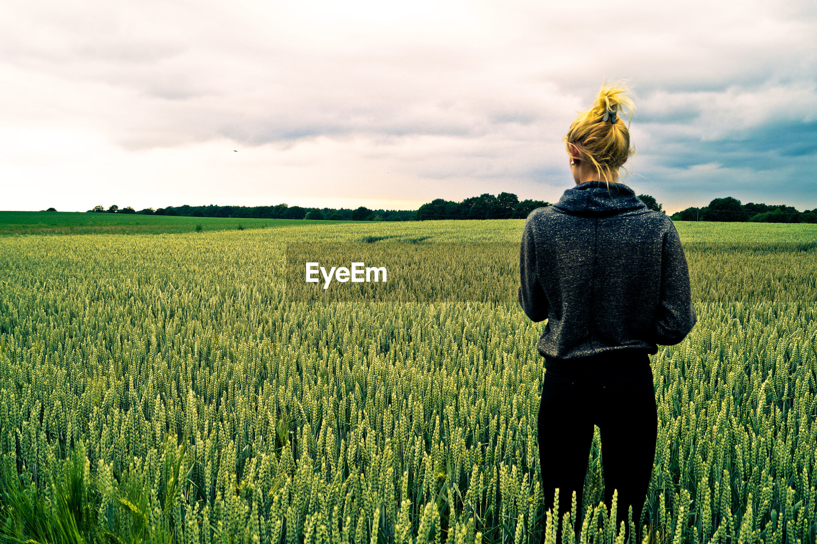 Rear view of young woman standing on wheat field