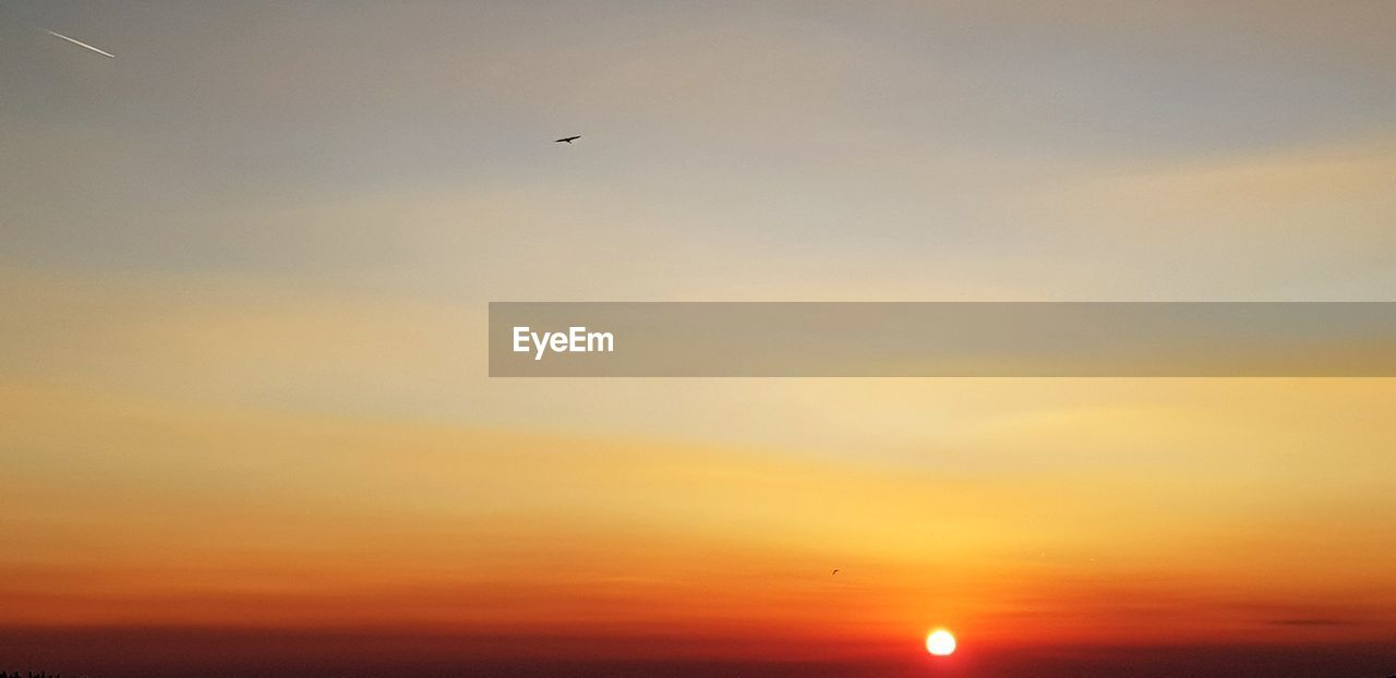 sky, sunset, orange color, scenics - nature, beauty in nature, bird, vertebrate, animal themes, animal, tranquil scene, tranquility, flying, animals in the wild, no people, animal wildlife, silhouette, sun, cloud - sky, nature, one animal, outdoors