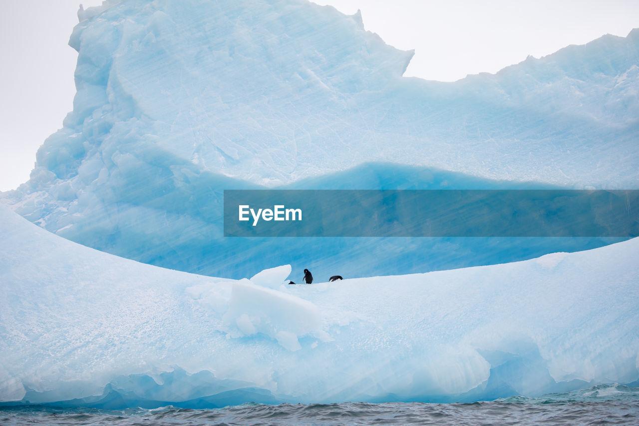 Icebergs In Sea During Winter