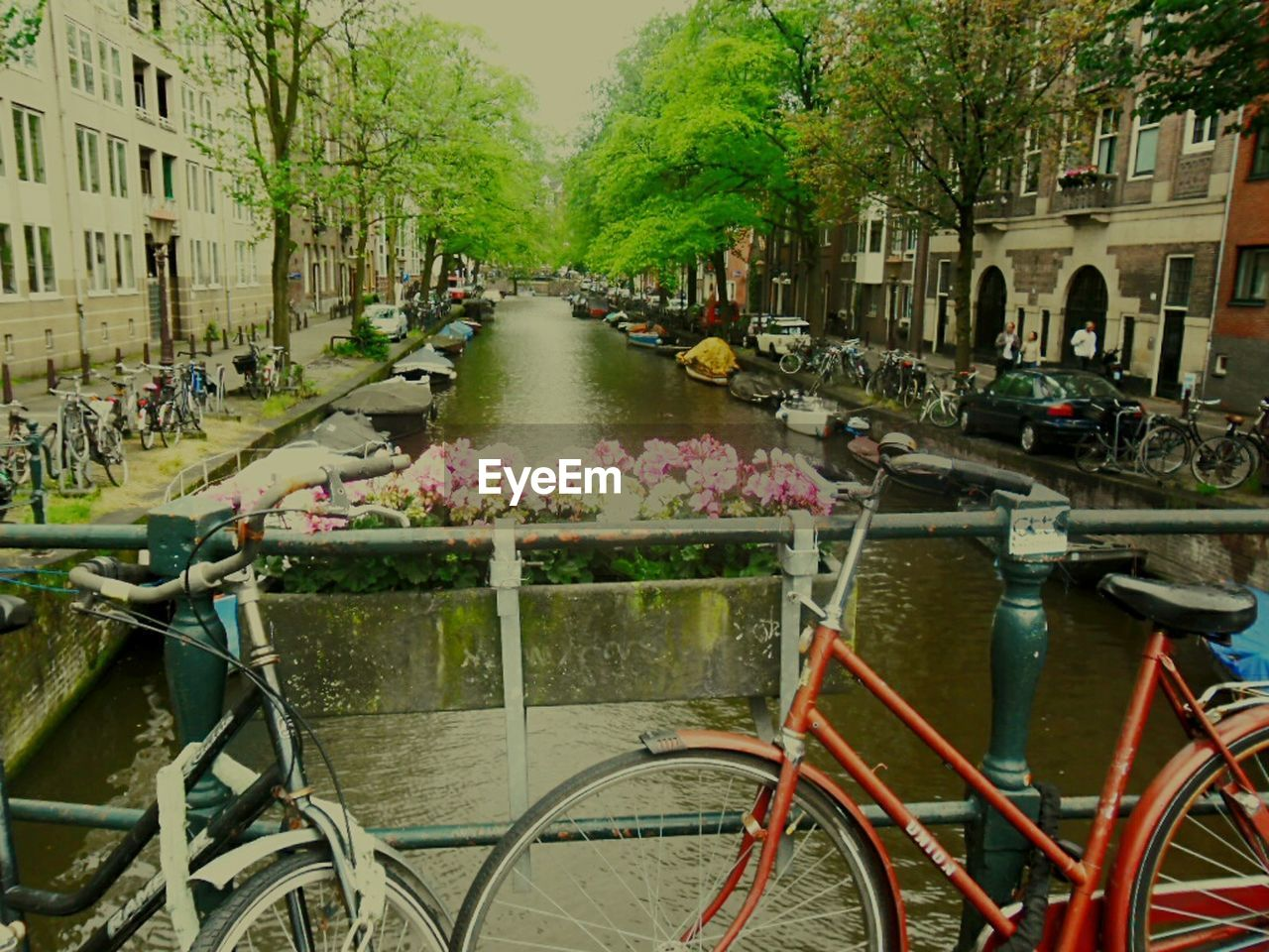 architecture, building exterior, transportation, built structure, mode of transport, outdoors, day, city, canal, water, bicycle, land vehicle, tree, nature, no people