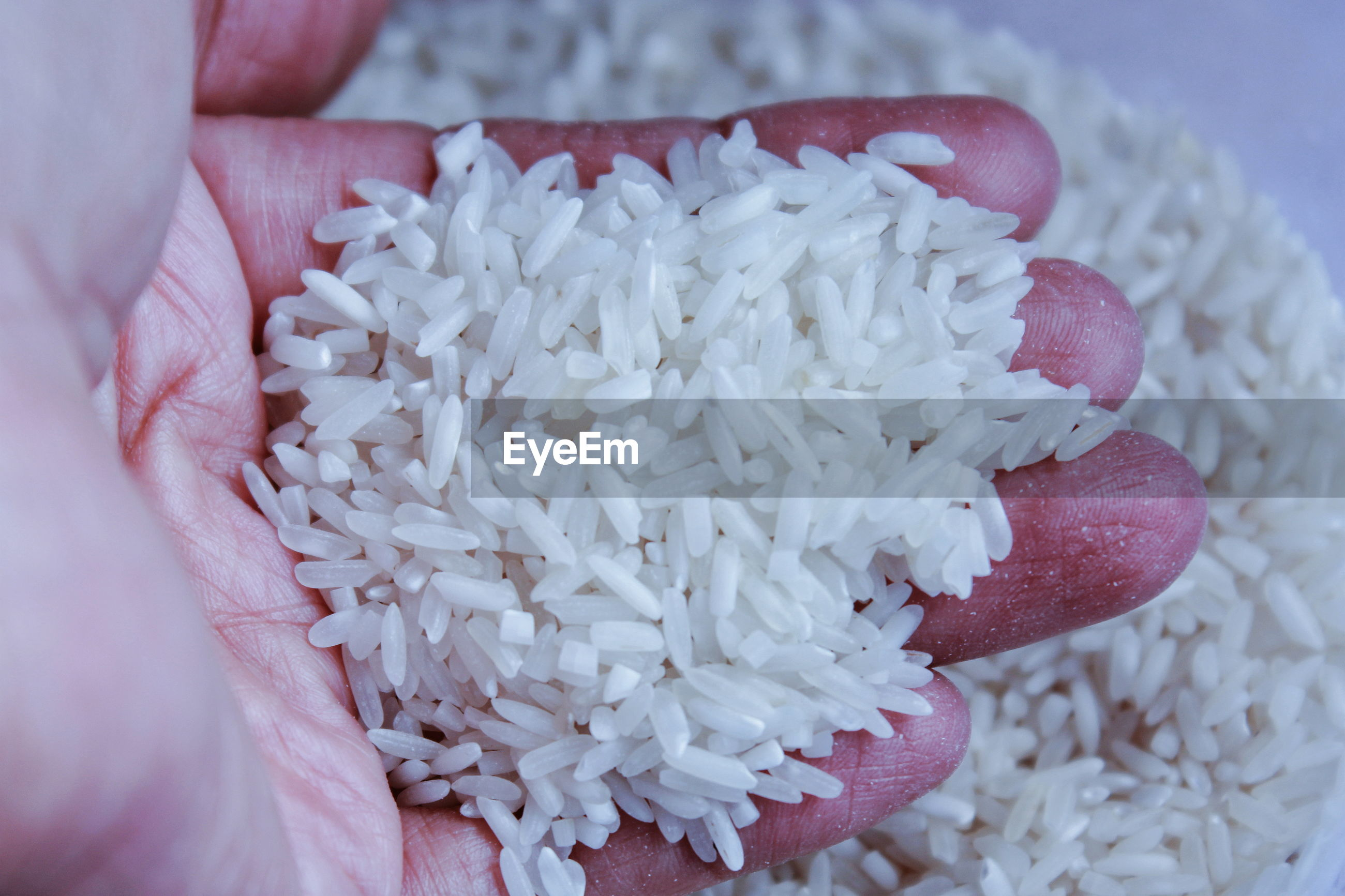 High angle view of hand holding rice