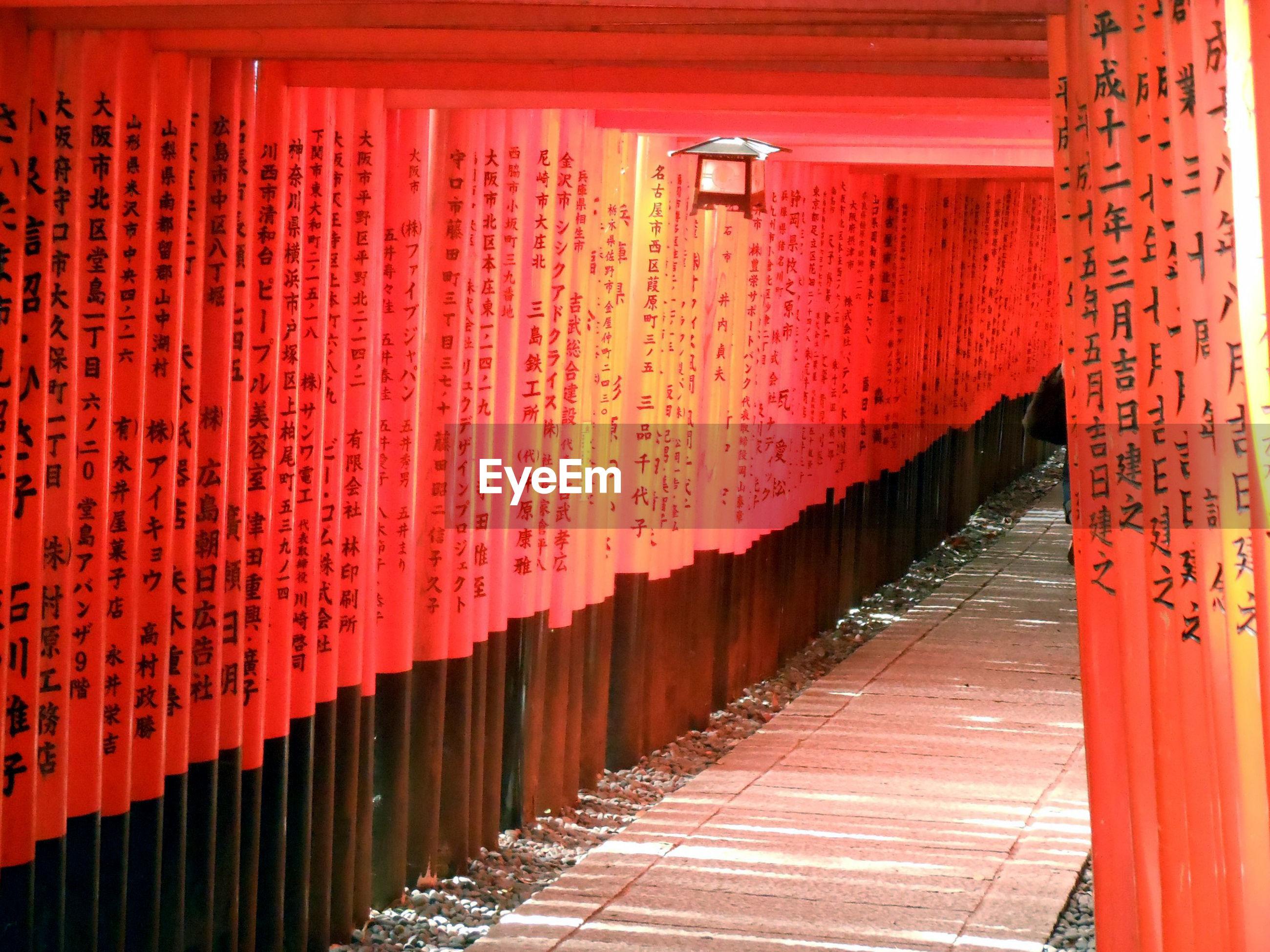 Row of torii gates