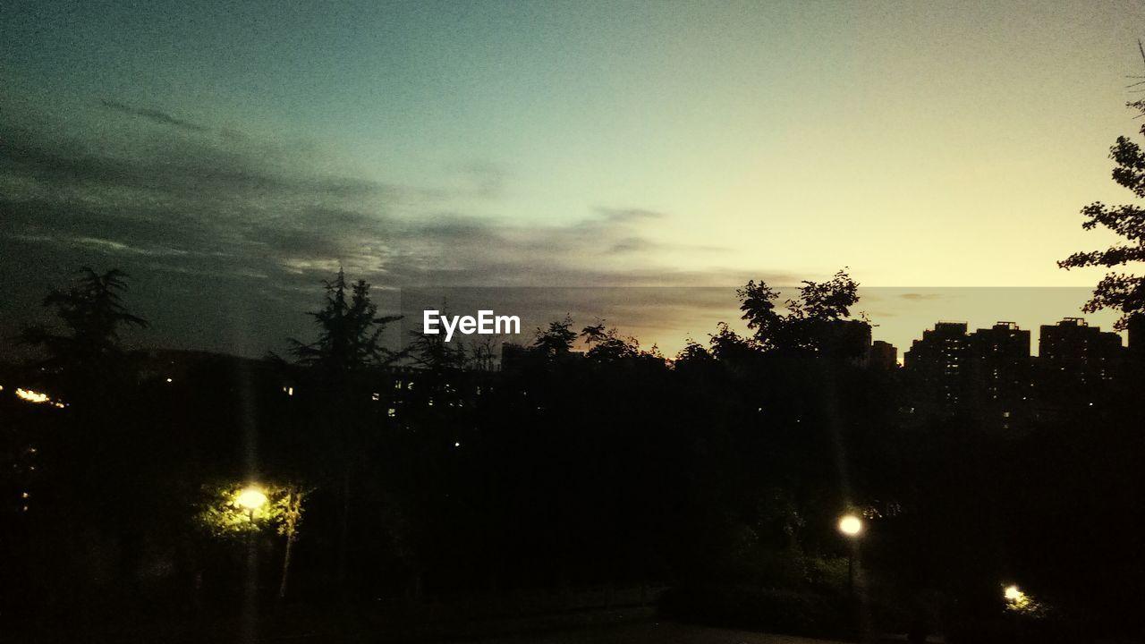 tree, no people, illuminated, night, sky, silhouette, outdoors, sunset, beauty in nature, scenics, nature