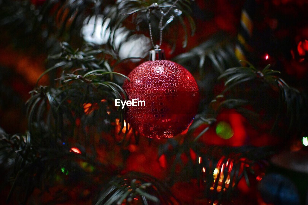 christmas decoration, christmas, christmas ornament, decoration, holiday, celebration, christmas tree, red, tree, holiday - event, hanging, close-up, celebration event, sphere, indoors, no people, christmas lights, focus on foreground