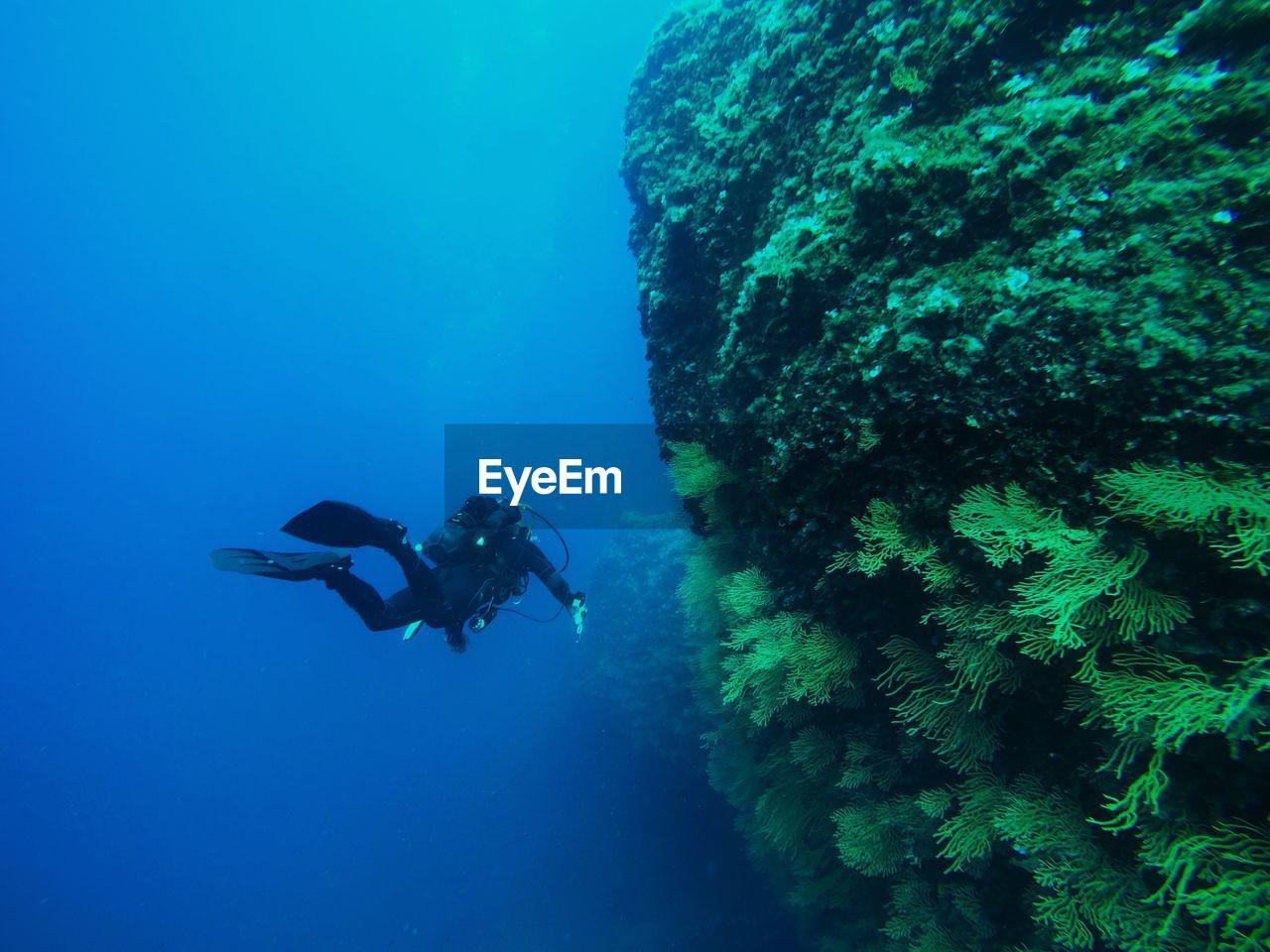Male Scuba Diver Swimming In Sea