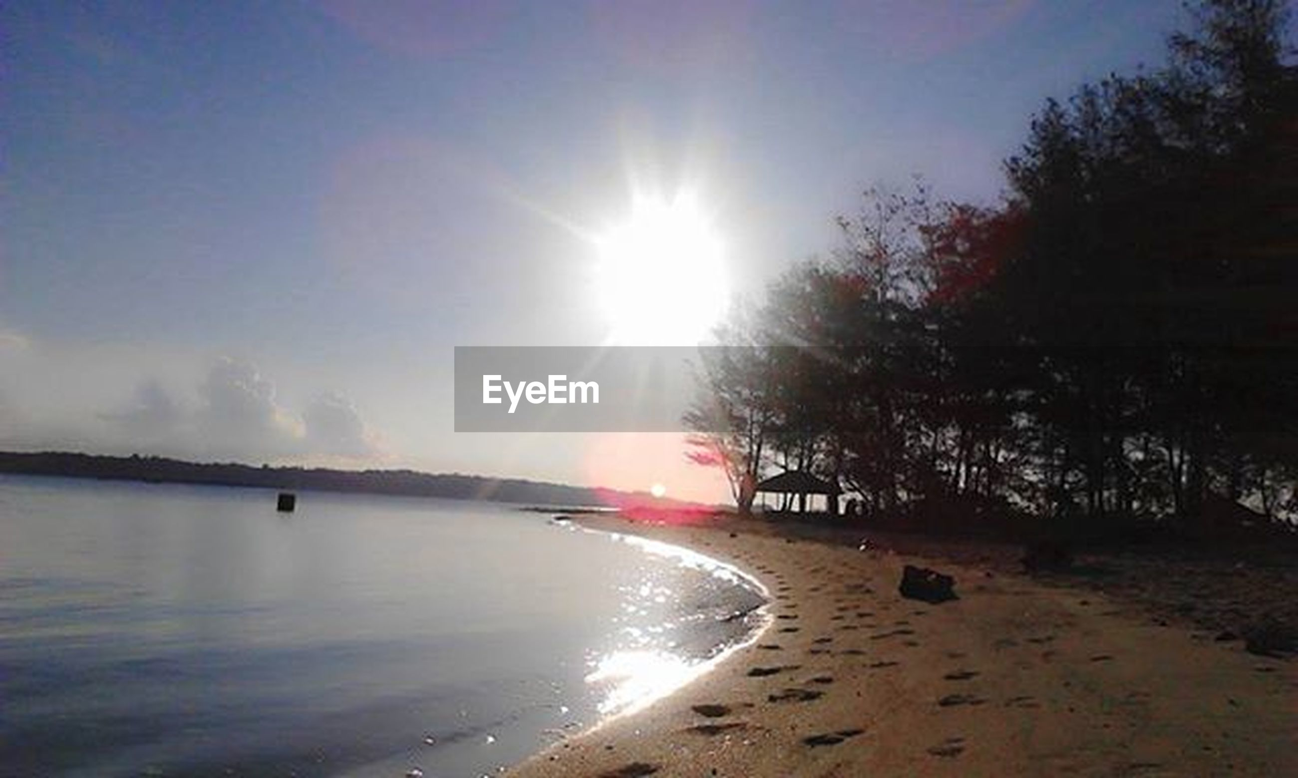 sun, sunlight, sunbeam, tree, water, tranquility, tranquil scene, lens flare, sky, scenics, beauty in nature, nature, sunny, beach, reflection, idyllic, river, outdoors, lake, non-urban scene
