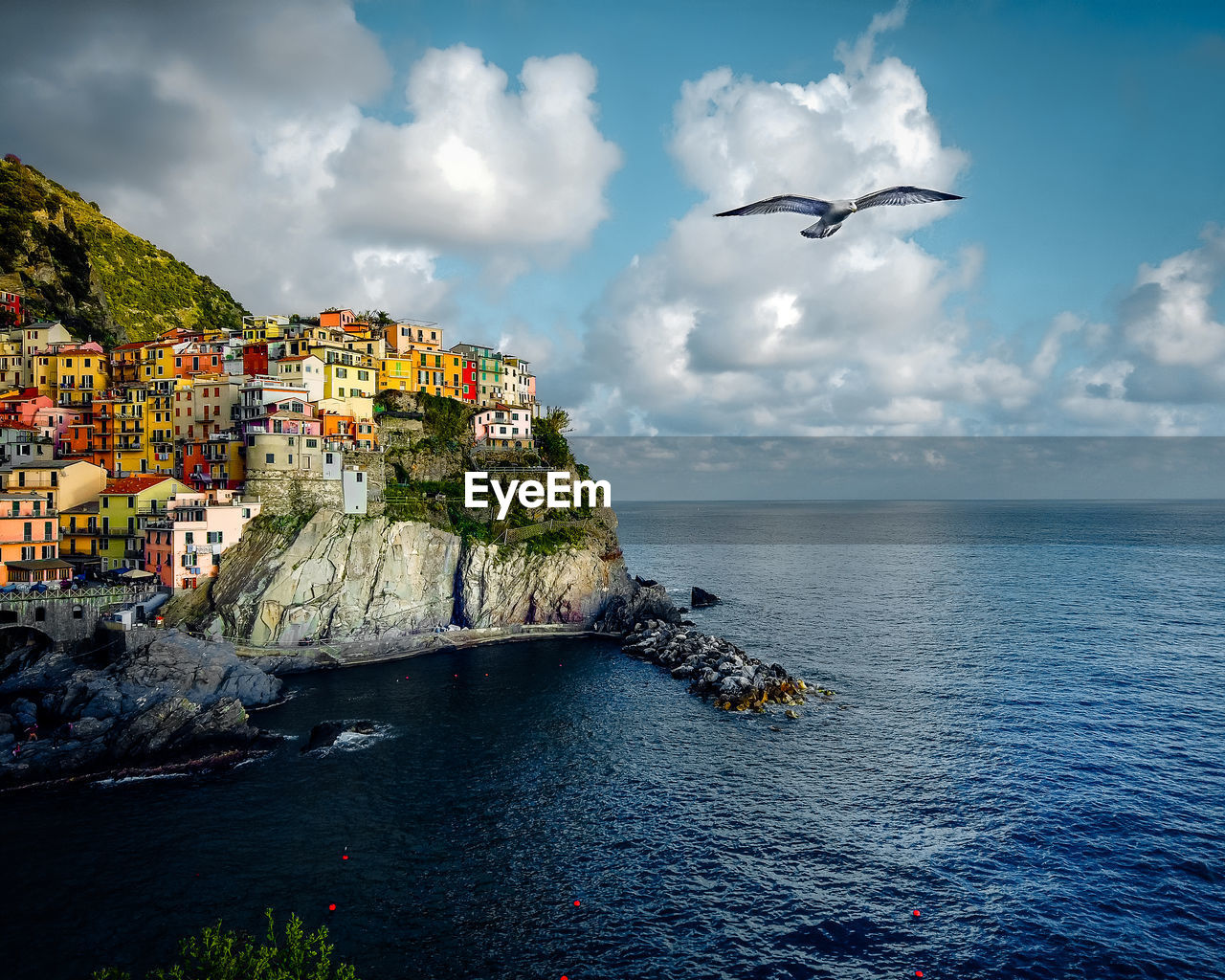 View of manarola in summer with seagull flying over head