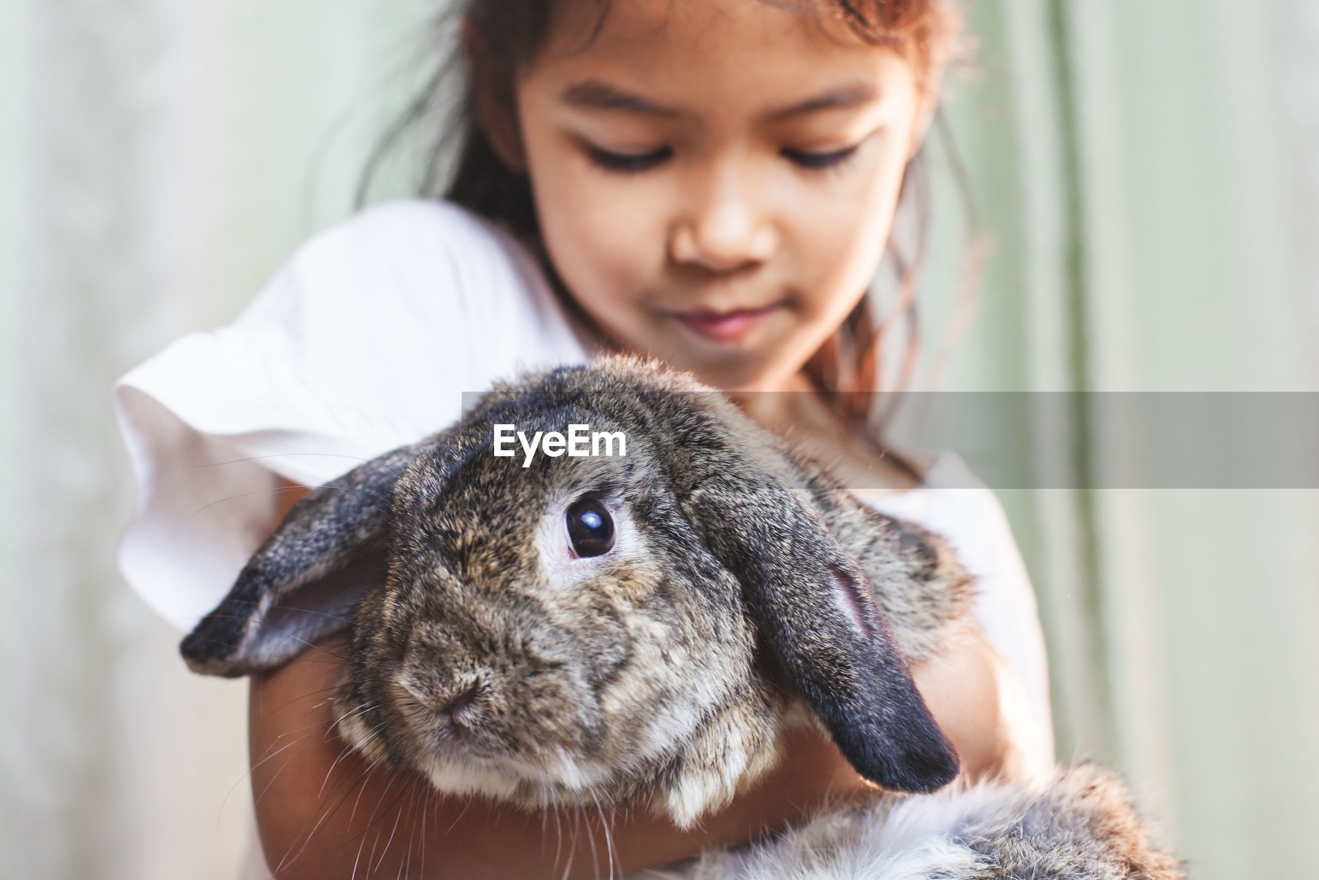 Cute of girl holding rabbit at home