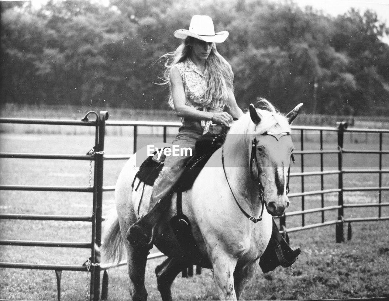 horse, domestic animals, horseback riding, animal themes, ranch, paddock, livestock, mammal, cowboy hat, railing, outdoors, day, one person, wild west, nature, young women, young adult, adult, people