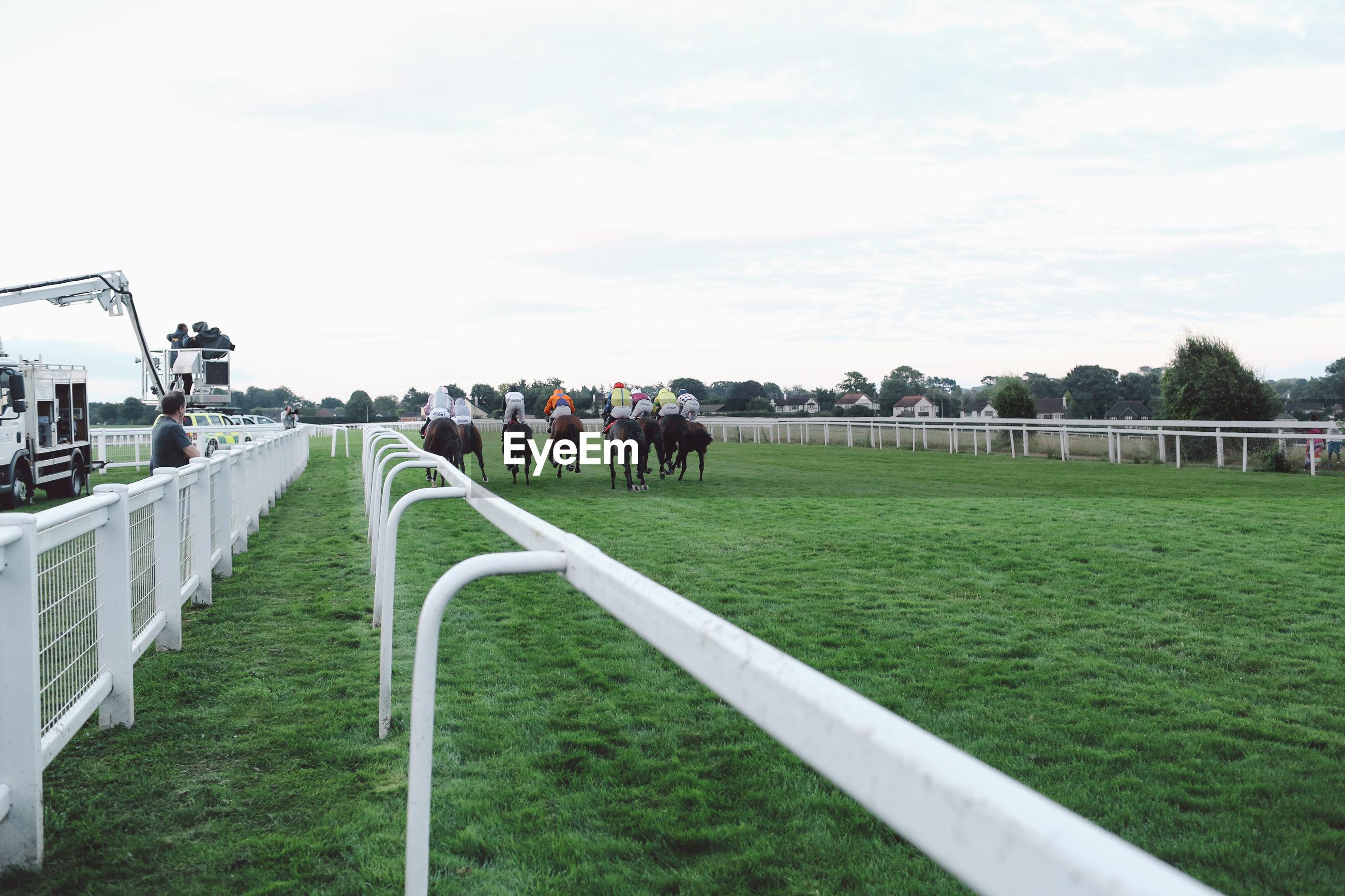 Rear view of jockeys riding horses at epsom downs racecourse