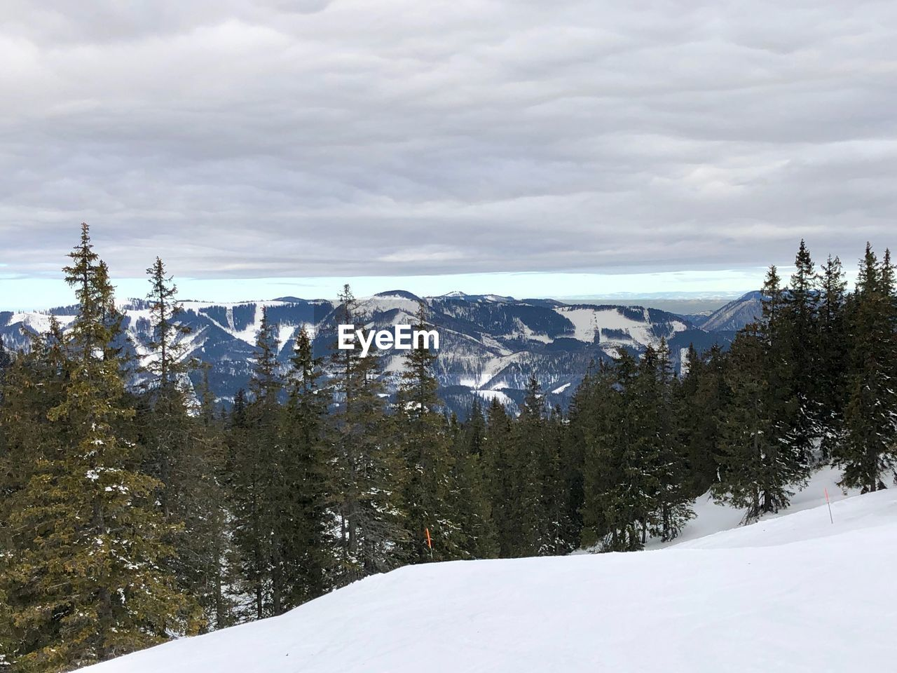 snow, winter, cold temperature, sky, cloud - sky, beauty in nature, tree, mountain, scenics - nature, plant, tranquil scene, environment, tranquility, nature, landscape, day, non-urban scene, covering, white color, no people, outdoors, snowcapped mountain, coniferous tree, range