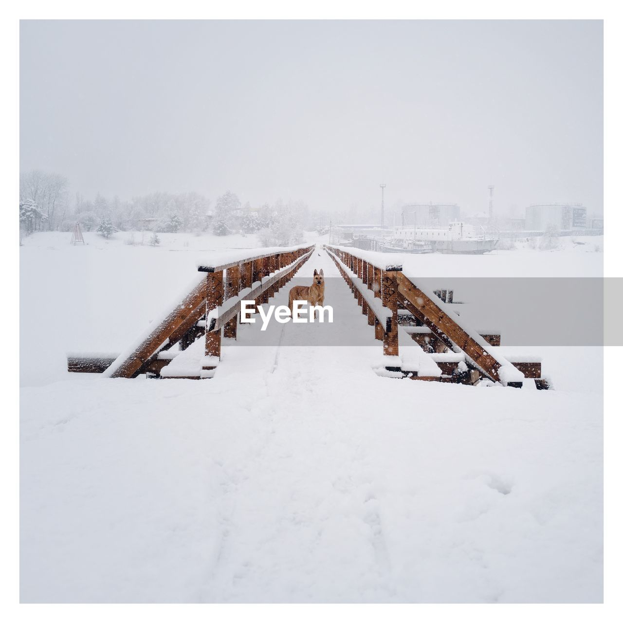 snow, auto post production filter, transfer print, cold temperature, winter, nature, architecture, sky, day, built structure, white color, outdoors, covering, copy space, frozen, clear sky, group of people, building exterior, water