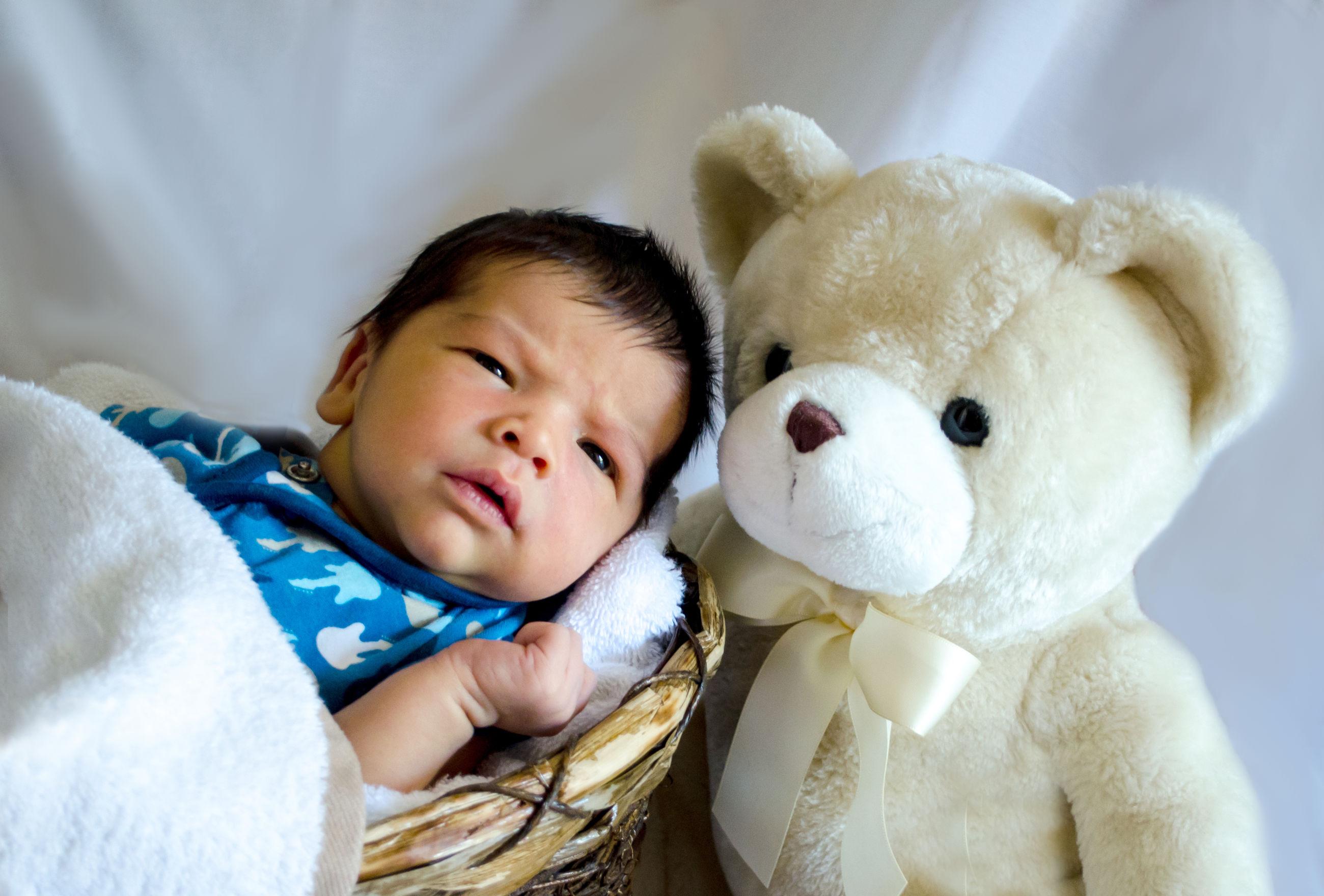 New born baby boy lies in a big basket with a stuffed teddy bear