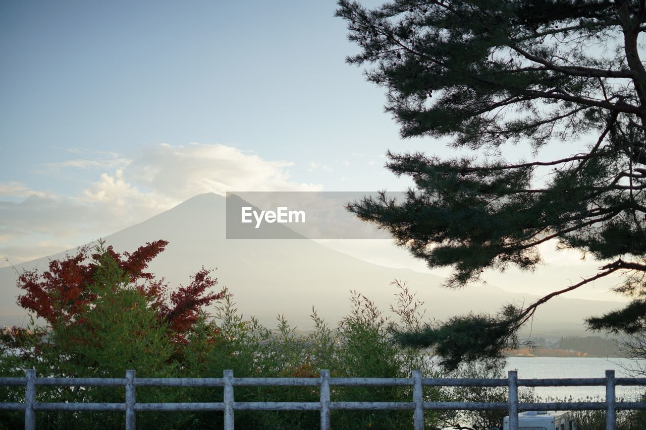 tree, sky, plant, mountain, tranquil scene, beauty in nature, tranquility, scenics - nature, nature, cloud - sky, water, barrier, no people, non-urban scene, day, fence, railing, boundary, mountain range, outdoors, mountain peak