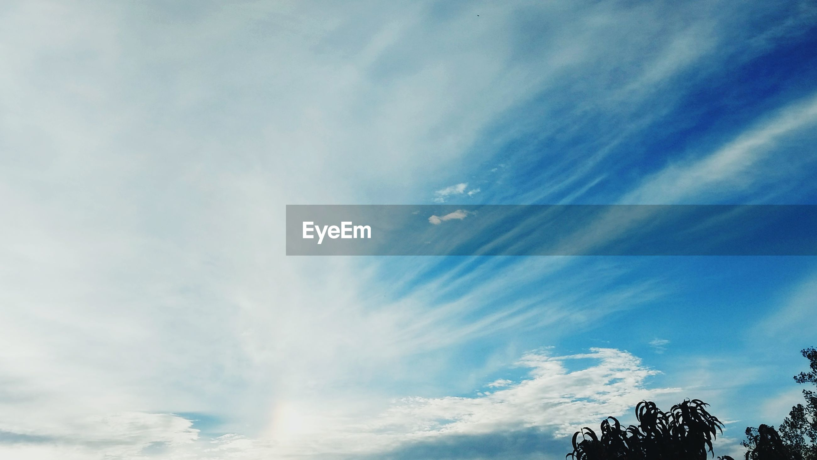 LOW ANGLE VIEW OF BLUE SKY AND CLOUDS IN SUNLIGHT