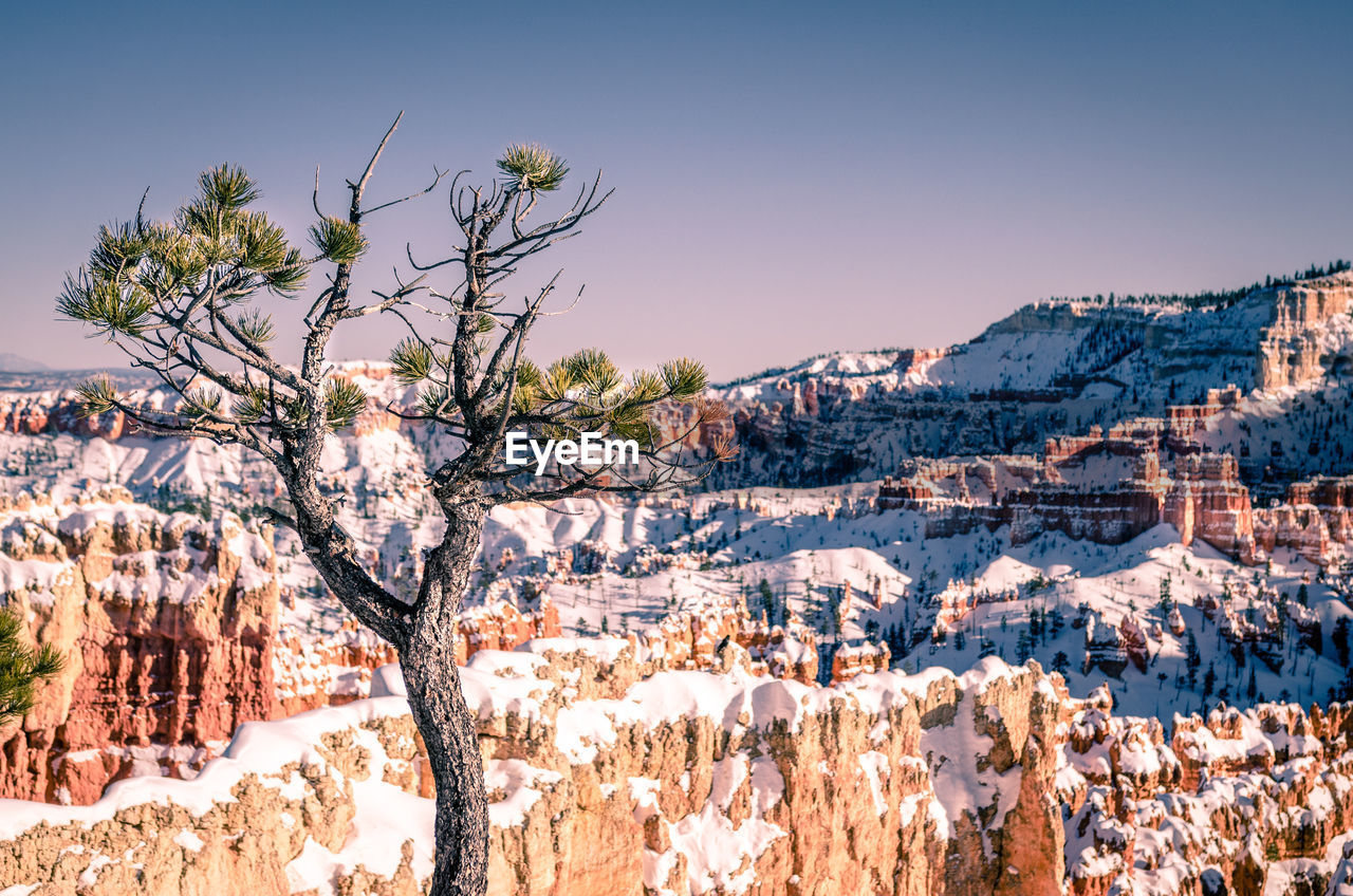 beauty in nature, sky, winter, scenics - nature, cold temperature, snow, nature, mountain, tranquil scene, tree, no people, tranquility, plant, rock, non-urban scene, environment, sunlight, day, rock - object, outdoors, formation, snowcapped mountain