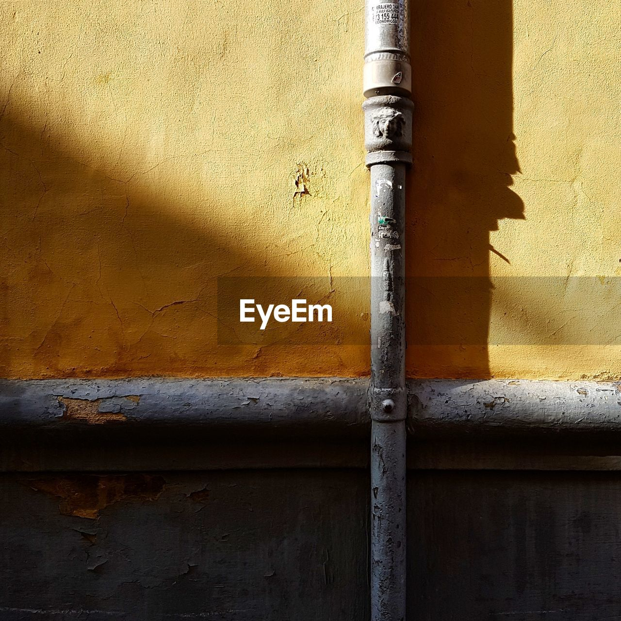 wall - building feature, built structure, architecture, day, no people, yellow, pipe - tube, metal, sunlight, building exterior, outdoors, animal themes, animal, close-up, nature, invertebrate, animals in the wild, pipe, insect, animal wildlife, latch