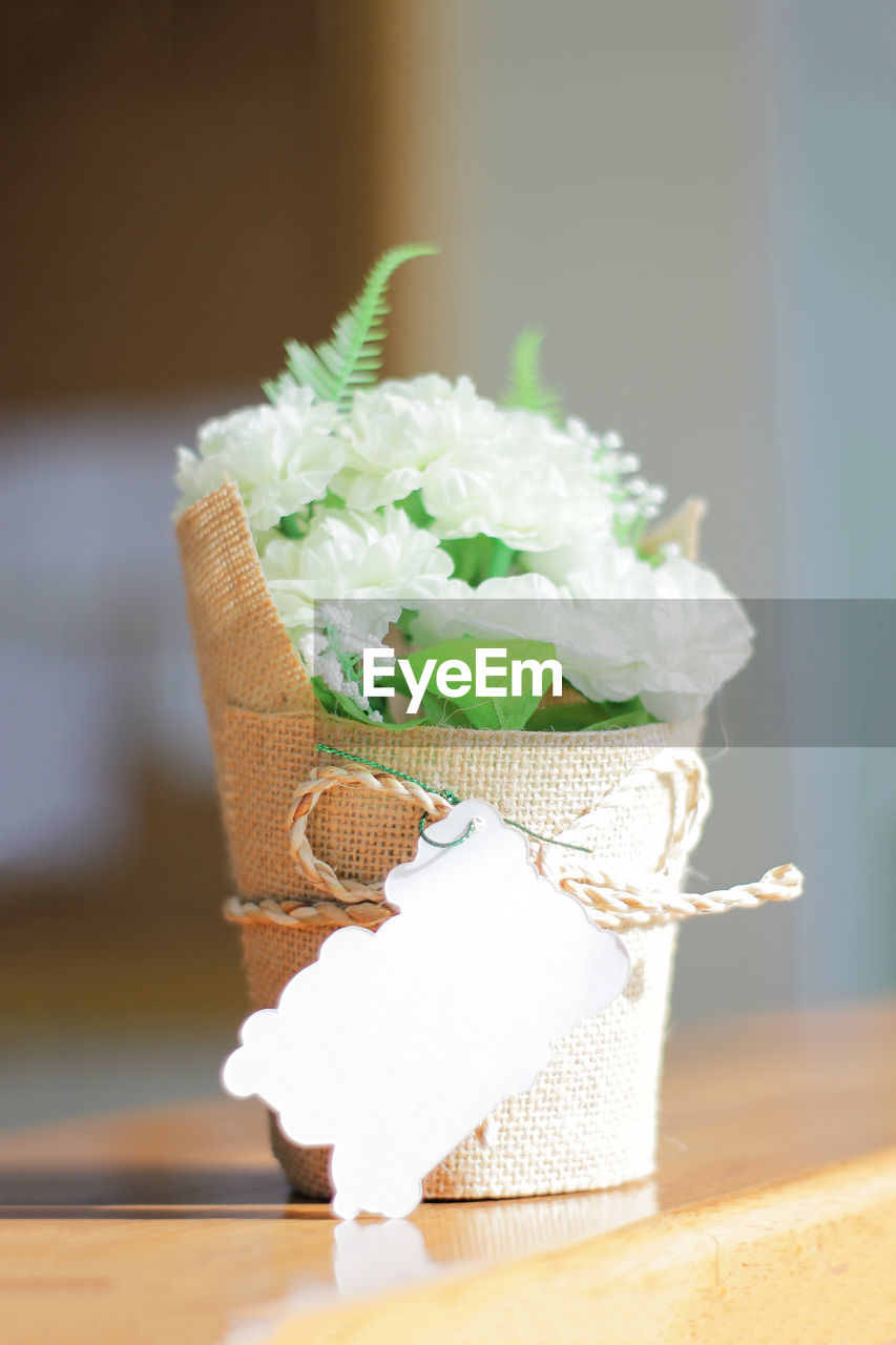 table, still life, indoors, no people, plant, nature, close-up, freshness, flower, focus on foreground, ribbon, ribbon - sewing item, selective focus, tied up, flowering plant, food and drink, sweet food, food, white color, container
