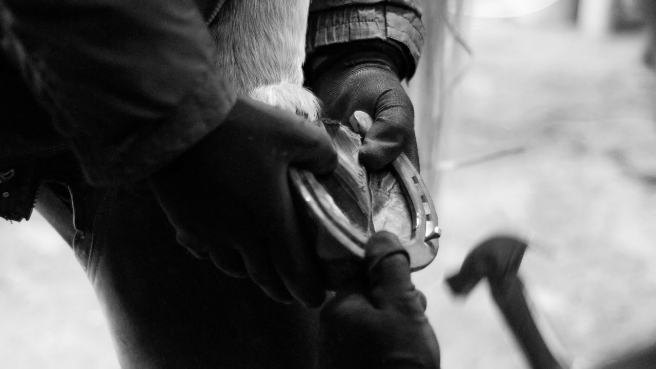 Cropped Image Of Hands Hammering Horseshoe