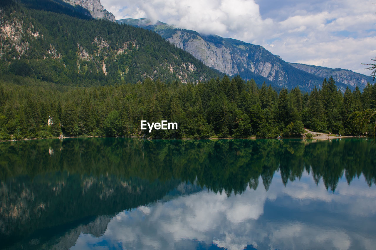 reflection, tree, beauty in nature, lake, scenics - nature, water, mountain, tranquility, tranquil scene, cloud - sky, plant, sky, waterfront, idyllic, non-urban scene, nature, day, green color, growth, no people, outdoors, reflection lake, coniferous tree