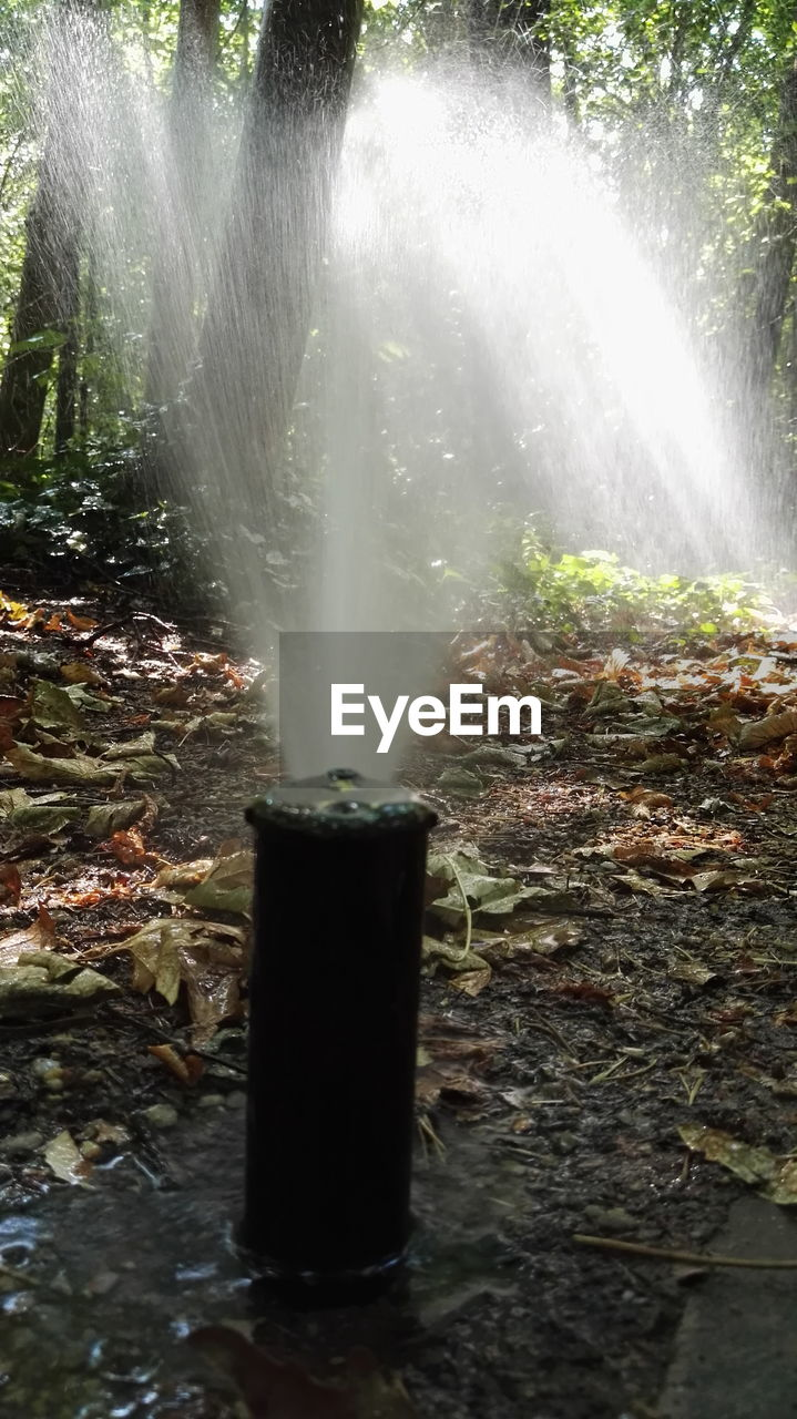 motion, long exposure, water, waterfall, nature, no people, beauty in nature, growth, outdoors, forest, day, spraying, tree