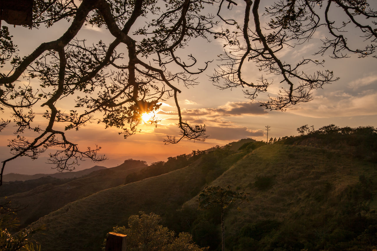 tree, sky, sunset, beauty in nature, scenics - nature, tranquility, tranquil scene, plant, cloud - sky, nature, landscape, sun, no people, branch, environment, non-urban scene, idyllic, mountain, growth, orange color, outdoors