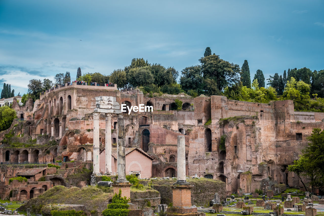 architecture, built structure, the past, history, sky, ancient, plant, building exterior, tree, travel destinations, nature, old ruin, ancient civilization, travel, tourism, old, no people, day, building, outdoors, archaeology, architectural column, ruined