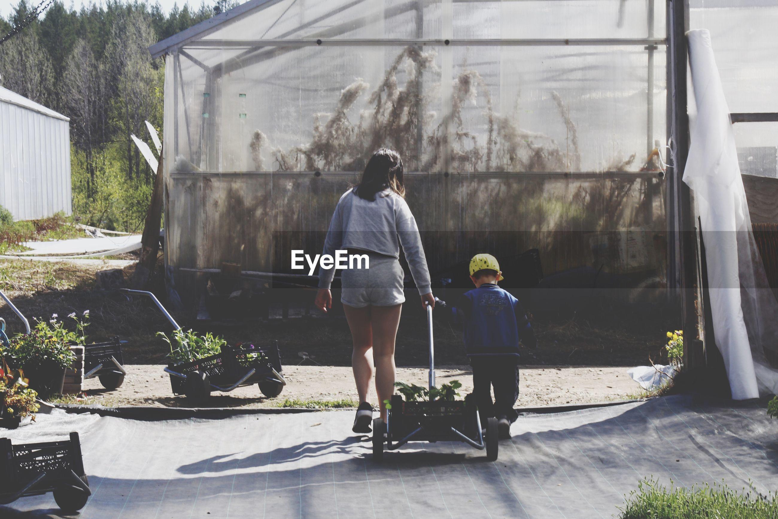Rear view of siblings pulling cart at greenhouse