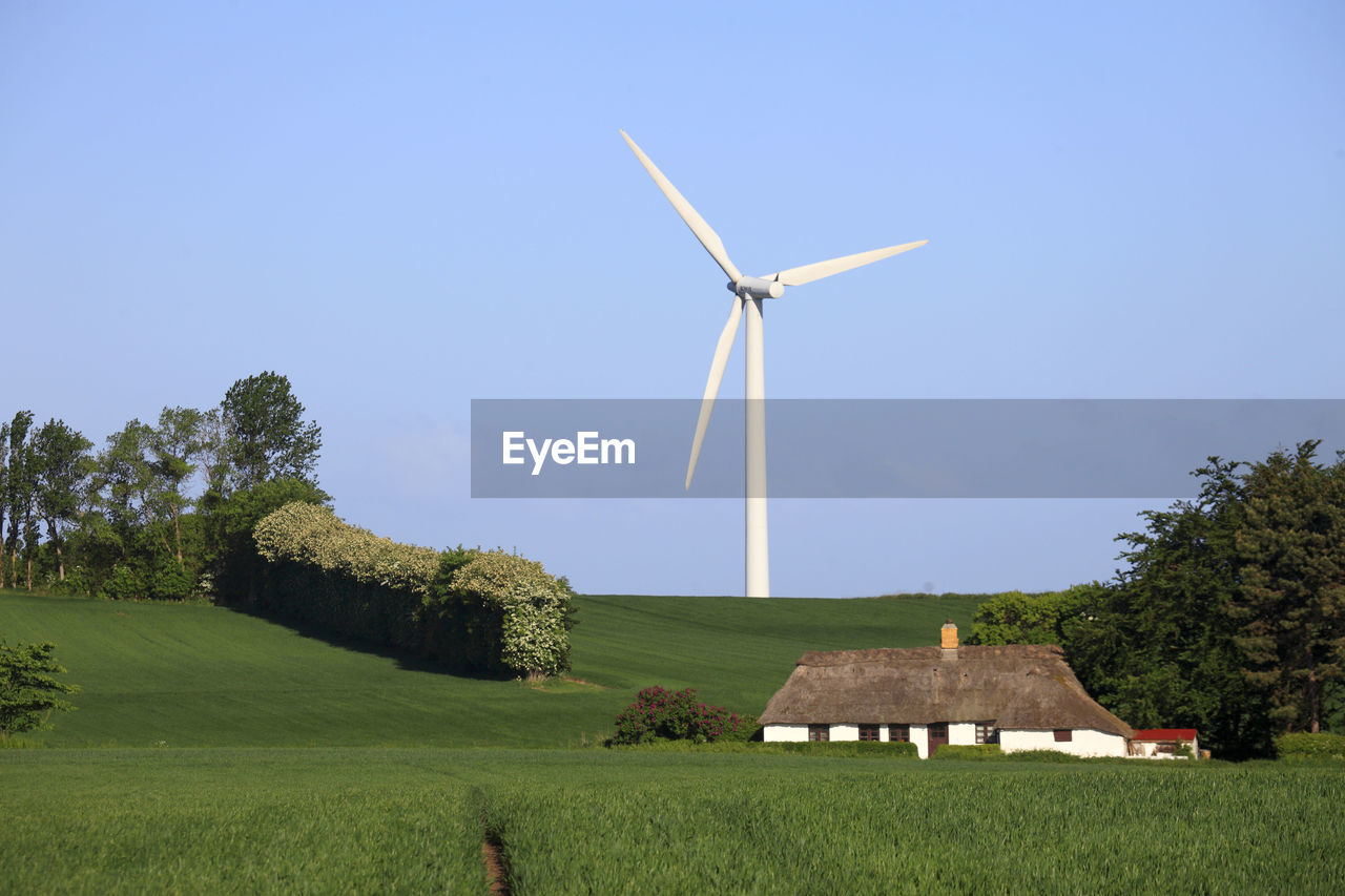 renewable energy, plant, environment, alternative energy, fuel and power generation, wind turbine, turbine, wind power, environmental conservation, field, sky, tree, grass, landscape, land, rural scene, nature, green color, growth, built structure, no people, outdoors