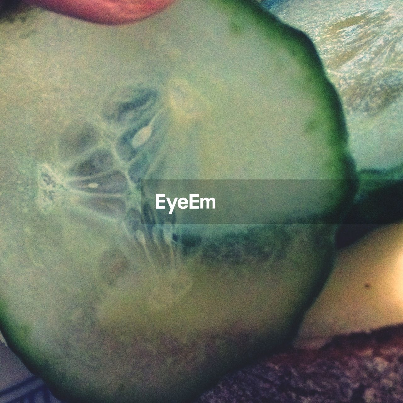 Cropped Image Of Cucumber Slice